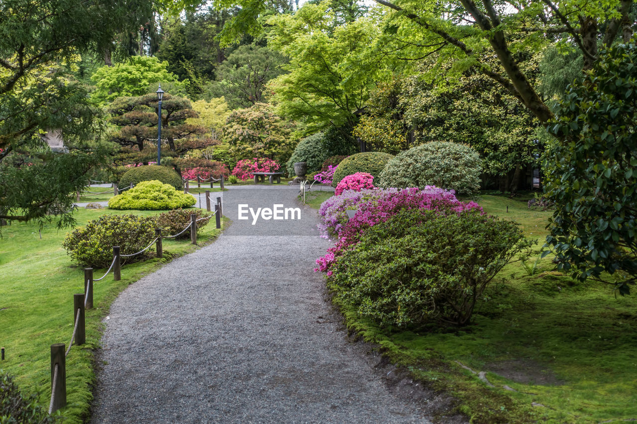 plant, tree, garden, flower, nature, beauty in nature, park, green color, ornamental garden, formal garden, park - man made space, tranquility, growth, footpath, bush, flowering plant, landscaped, grass, no people, garden path, flowerbed, outdoors, gravel, hedge, park bench