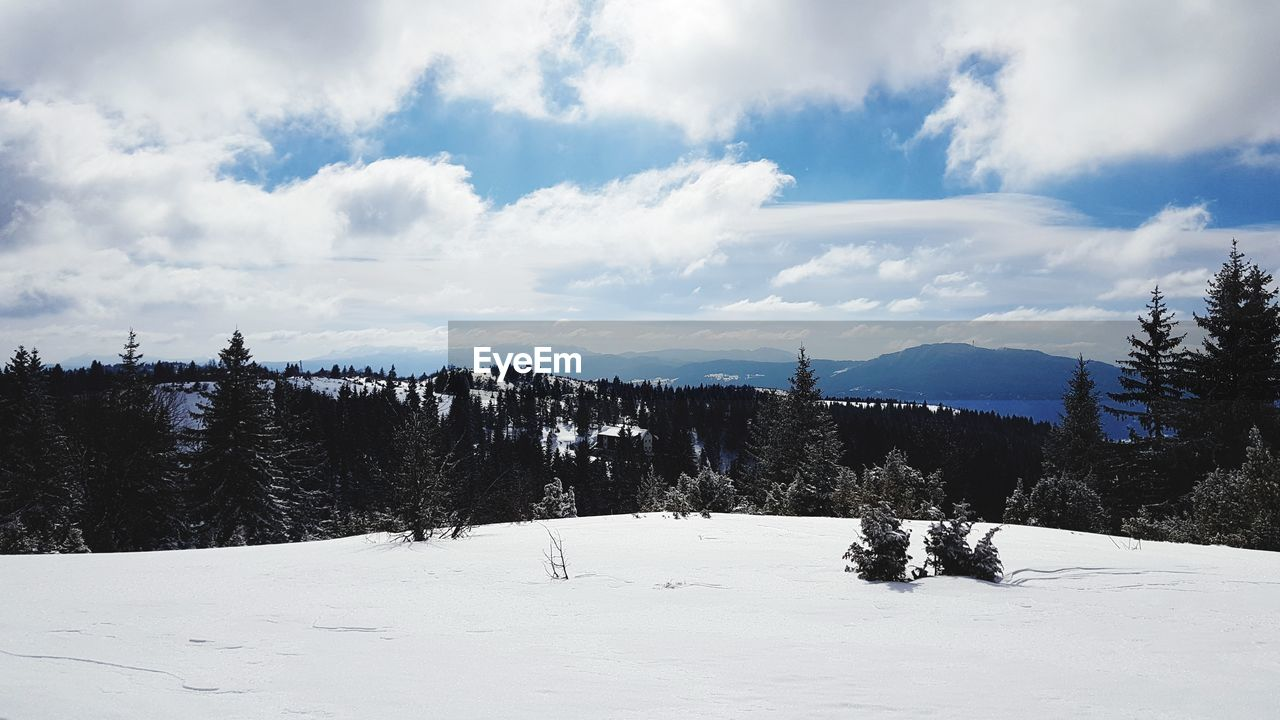 snow, cloud - sky, winter, sky, cold temperature, tree, plant, scenics - nature, beauty in nature, tranquil scene, environment, tranquility, nature, non-urban scene, mountain, land, landscape, day, white color, no people, outdoors, snowcapped mountain