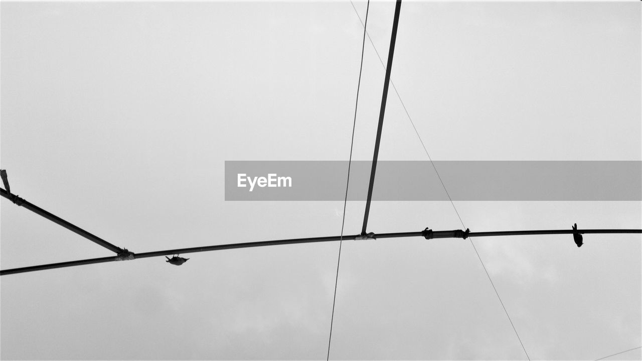 sky, low angle view, cable, no people, connection, electricity, nature, day, power line, outdoors, copy space, clear sky, lighting equipment, power supply, metal, fuel and power generation, pole, perching, wire, technology, light