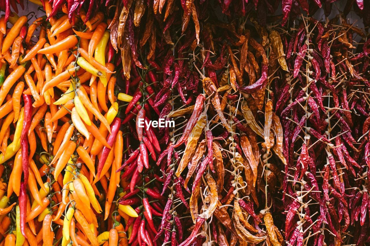 chili pepper, abundance, vegetable, large group of objects, spice, food and drink, pepper, food, multi colored, freshness, full frame, retail, variation, choice, still life, no people, backgrounds, high angle view, red chili pepper, market, retail display