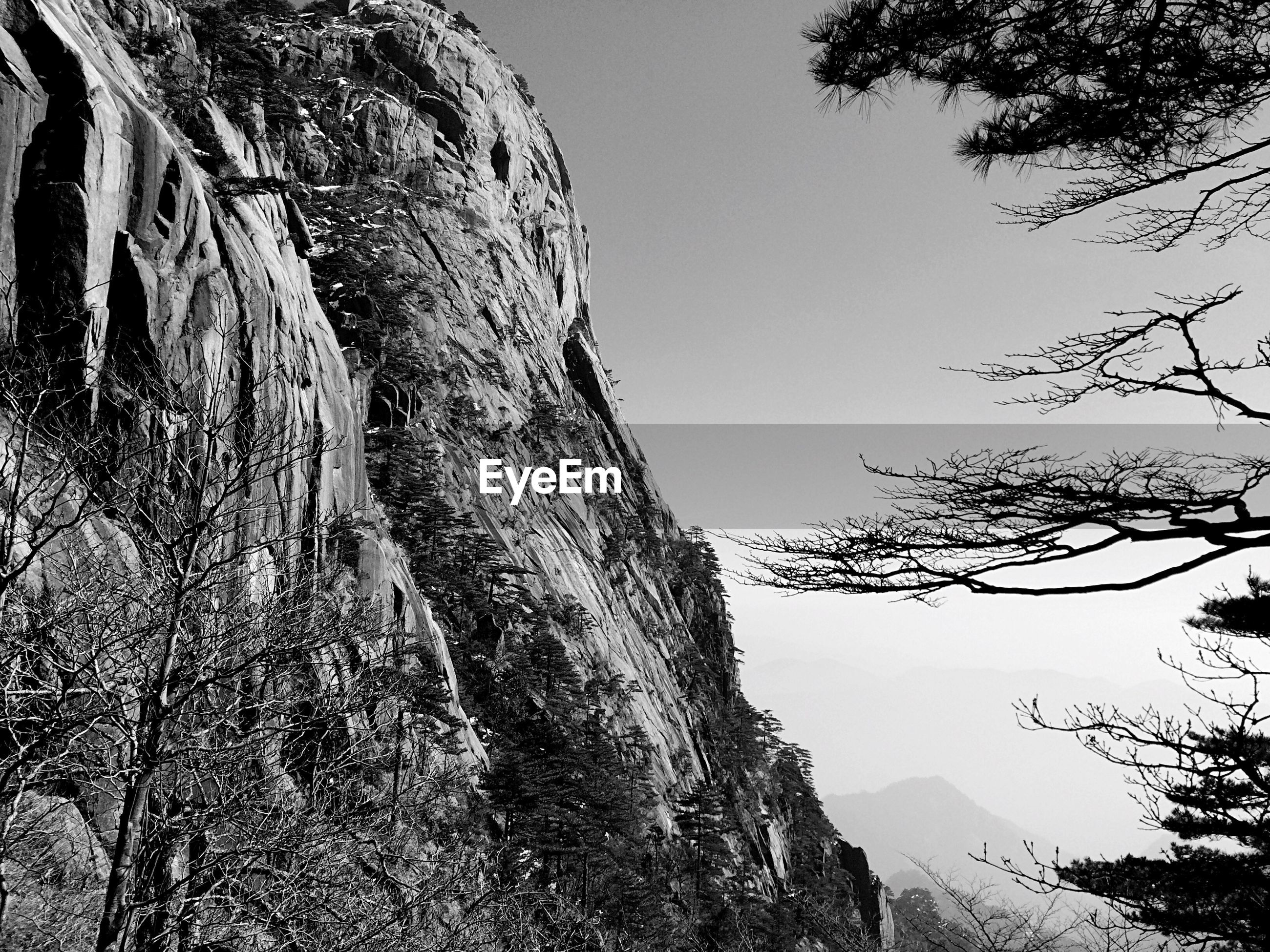 tree, low angle view, clear sky, branch, tree trunk, nature, tranquility, sky, day, growth, no people, mountain, outdoors, bare tree, beauty in nature, tranquil scene, scenics, blue, rock formation, built structure