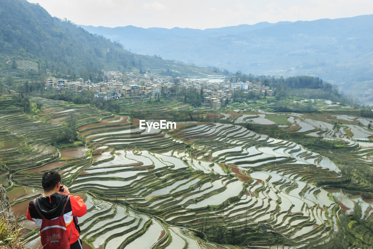 agriculture, mountain, rice paddy, high angle view, one person, real people, landscape, terraced field, nature, field, rice - cereal plant, outdoors, day, scenics, plant, men, farmer, tree, young adult, beauty in nature, one man only, adult, people