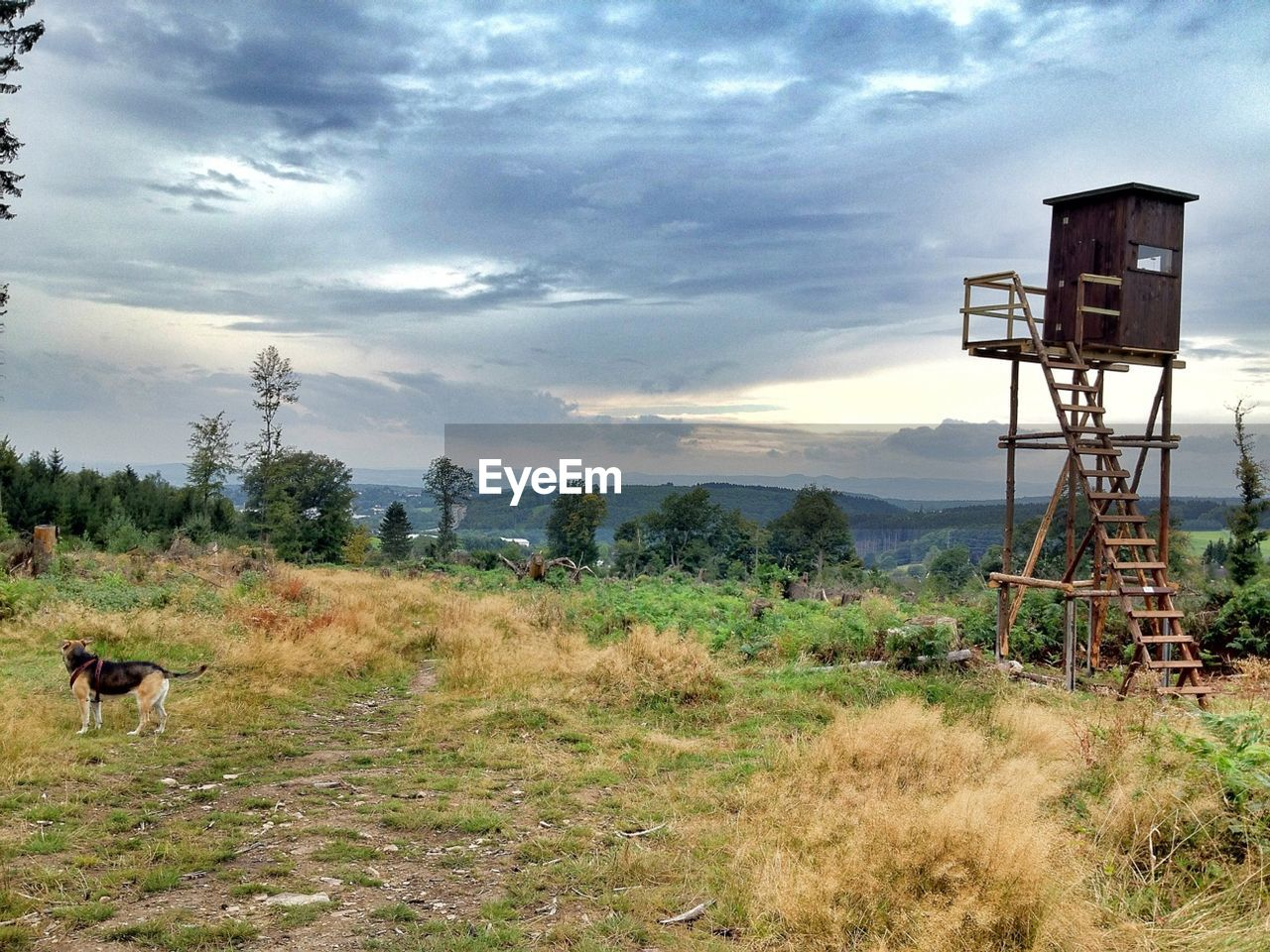 Lookout tower on field