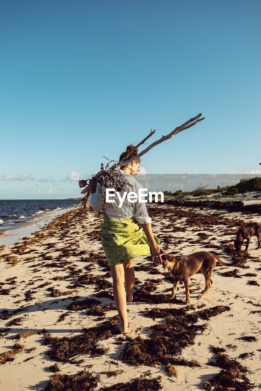 sky, one animal, land, animal themes, mammal, pets, animal, real people, beach, dog, domestic, canine, domestic animals, clear sky, full length, water, one person, nature, vertebrate, rear view, pet owner