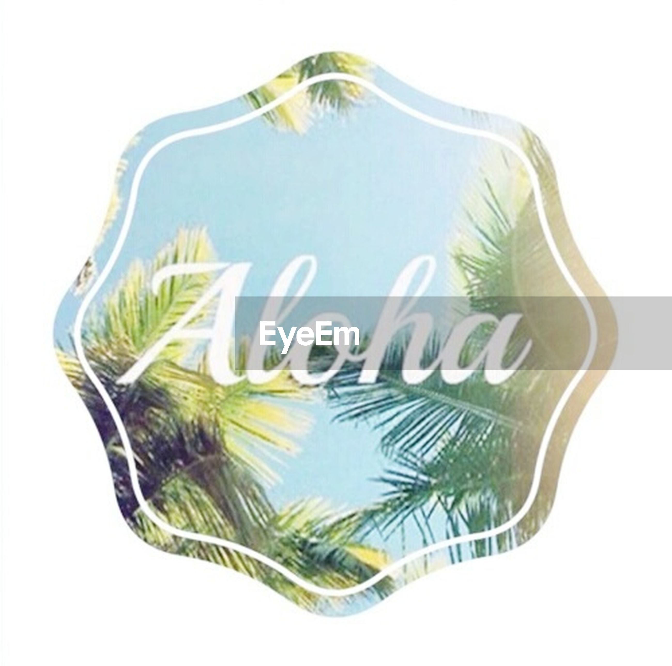 studio shot, white background, text, western script, copy space, clear sky, close-up, art, creativity, communication, low angle view, art and craft, cut out, palm tree, no people, digital composite, ideas, green color, blue, white color