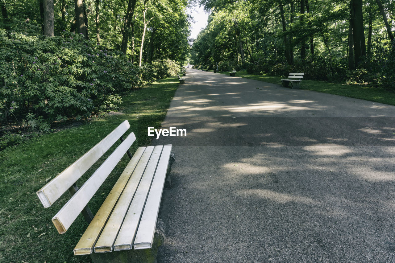 plant, tree, nature, shadow, no people, absence, day, sunlight, growth, park, empty, bench, transportation, road, beauty in nature, the way forward, tranquility, seat, park - man made space, outdoors, park bench
