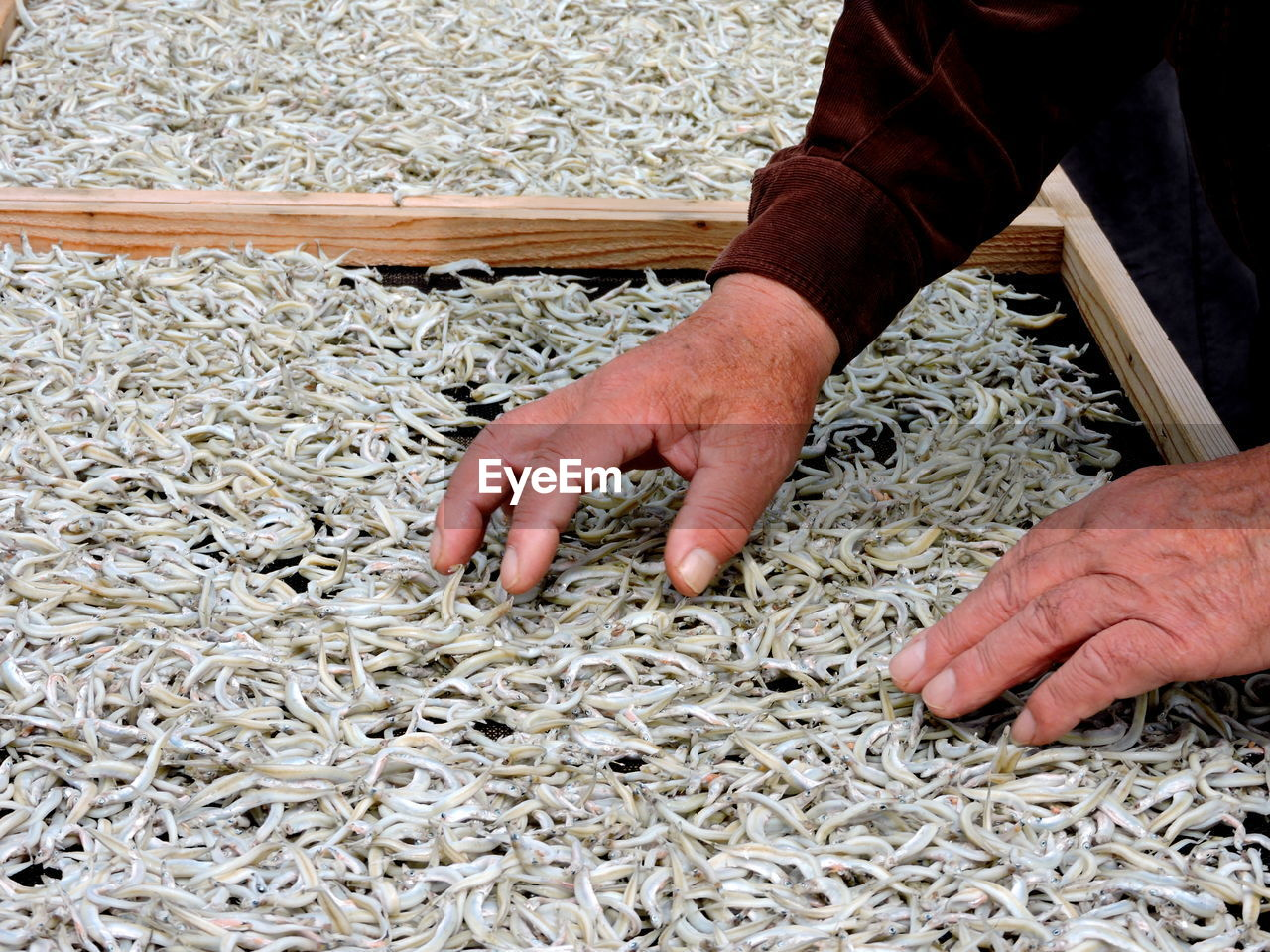 Cropped Hands Of Man Drying Fish