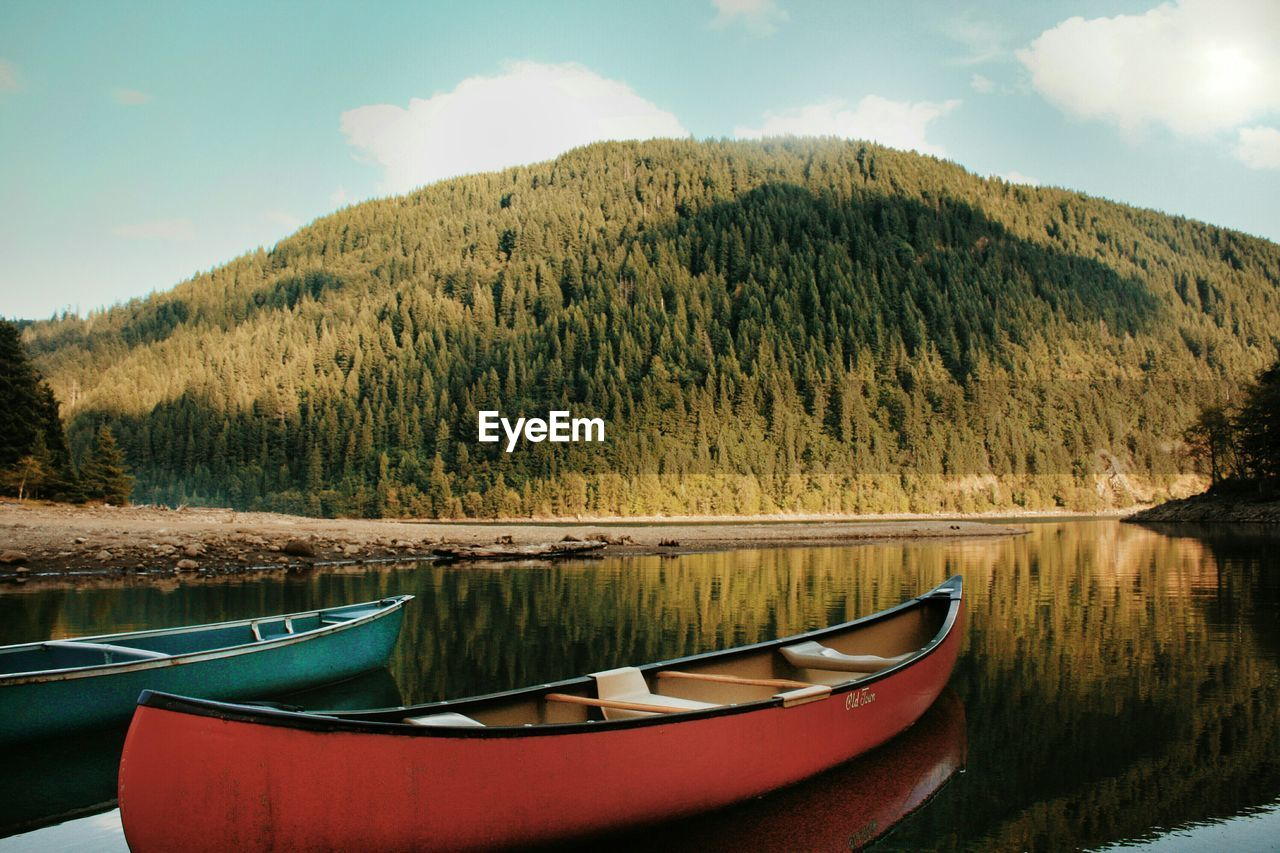 Kayaks moored in lake against tree mountain