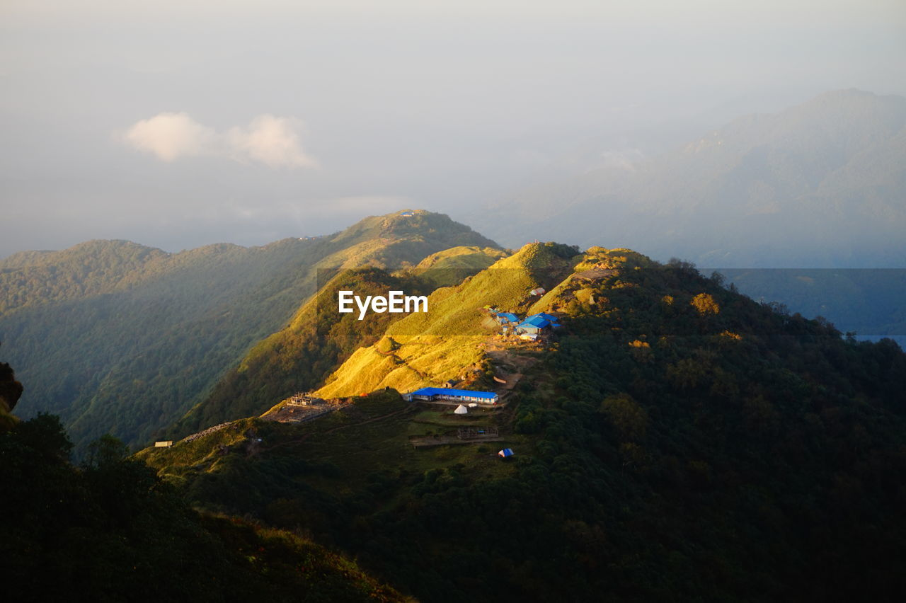 HIGH ANGLE VIEW OF TREES ON MOUNTAIN AGAINST SKY
