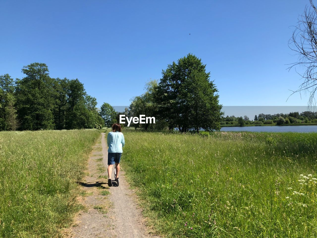 plant, grass, full length, sky, rear view, tree, walking, nature, field, day, real people, one person, lifestyles, growth, leisure activity, clear sky, men, casual clothing, land, green color, outdoors