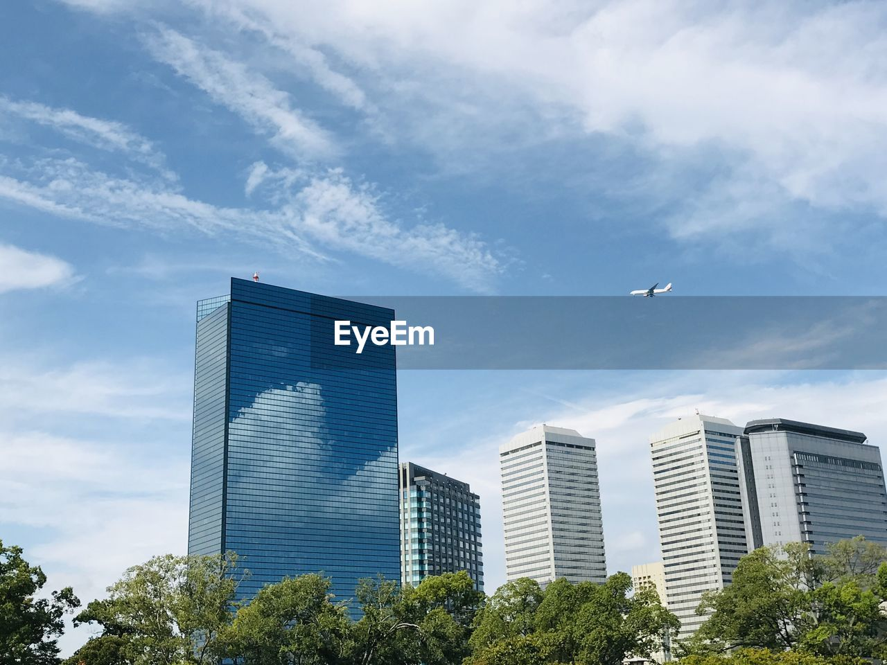 built structure, architecture, sky, building exterior, cloud - sky, building, city, low angle view, bird, tree, plant, no people, nature, office building exterior, flying, animal themes, modern, animal, day, office, skyscraper, outdoors, financial district