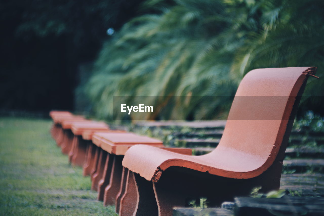 plant, focus on foreground, day, no people, nature, close-up, tree, selective focus, green color, park, outdoors, park - man made space, bench, absence, empty, seat, metal, land, wood - material, growth, park bench