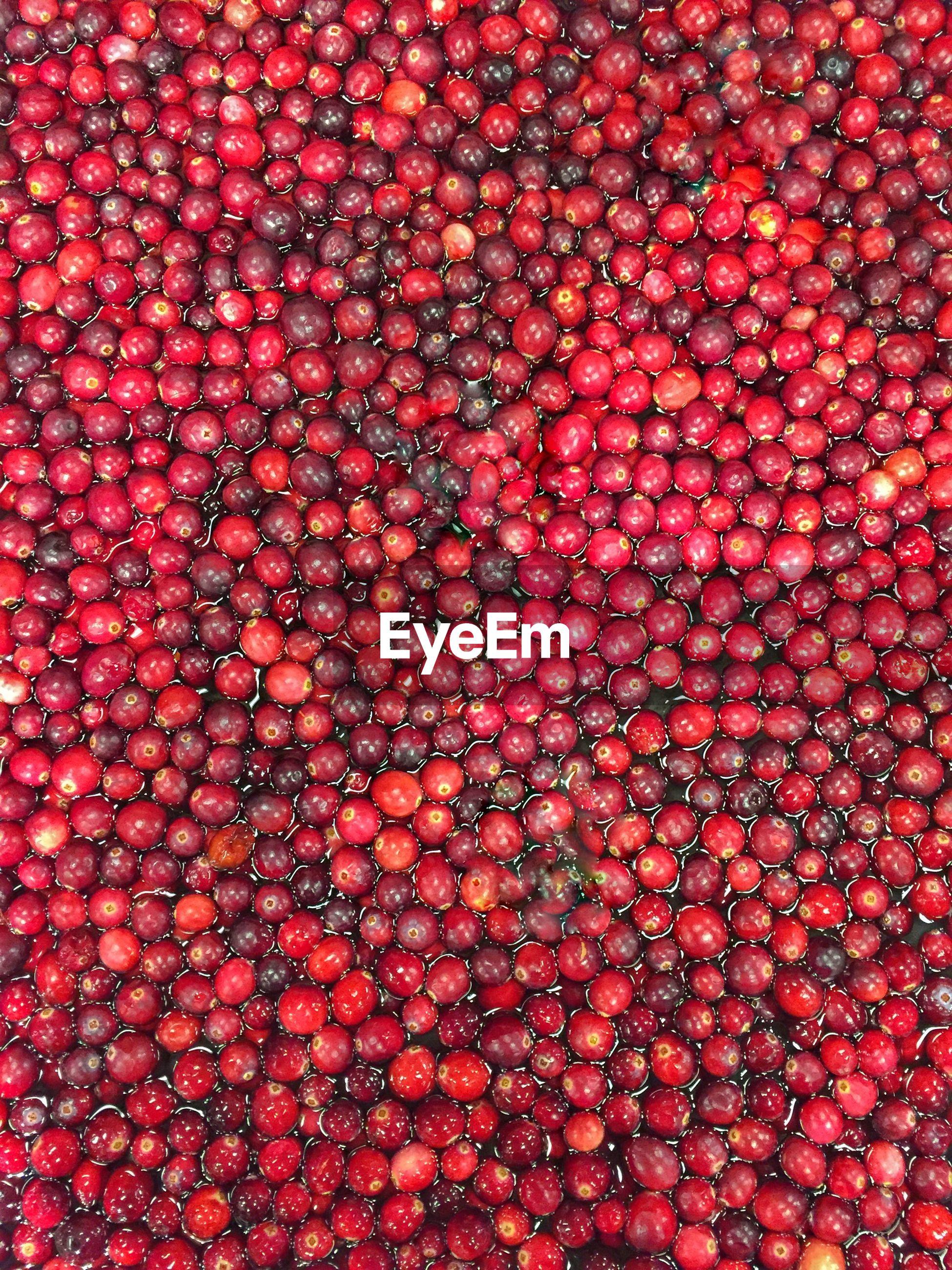 Full frame shot of red berries in water