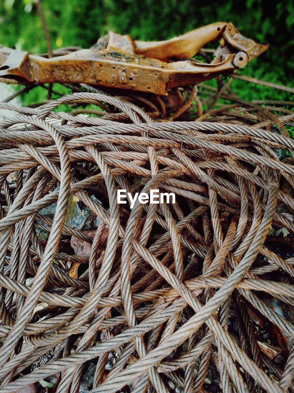close-up, focus on foreground, day, plant, no people, nature, field, dry, land, plant part, grass, brown, outdoors, leaf, wood - material, tree, leaves, still life, high angle view, rope