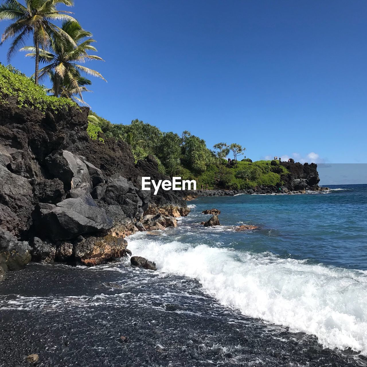 sea, water, sky, beauty in nature, land, rock, beach, nature, motion, solid, scenics - nature, clear sky, rock - object, tree, wave, blue, day, palm tree, no people, outdoors, power in nature, breaking