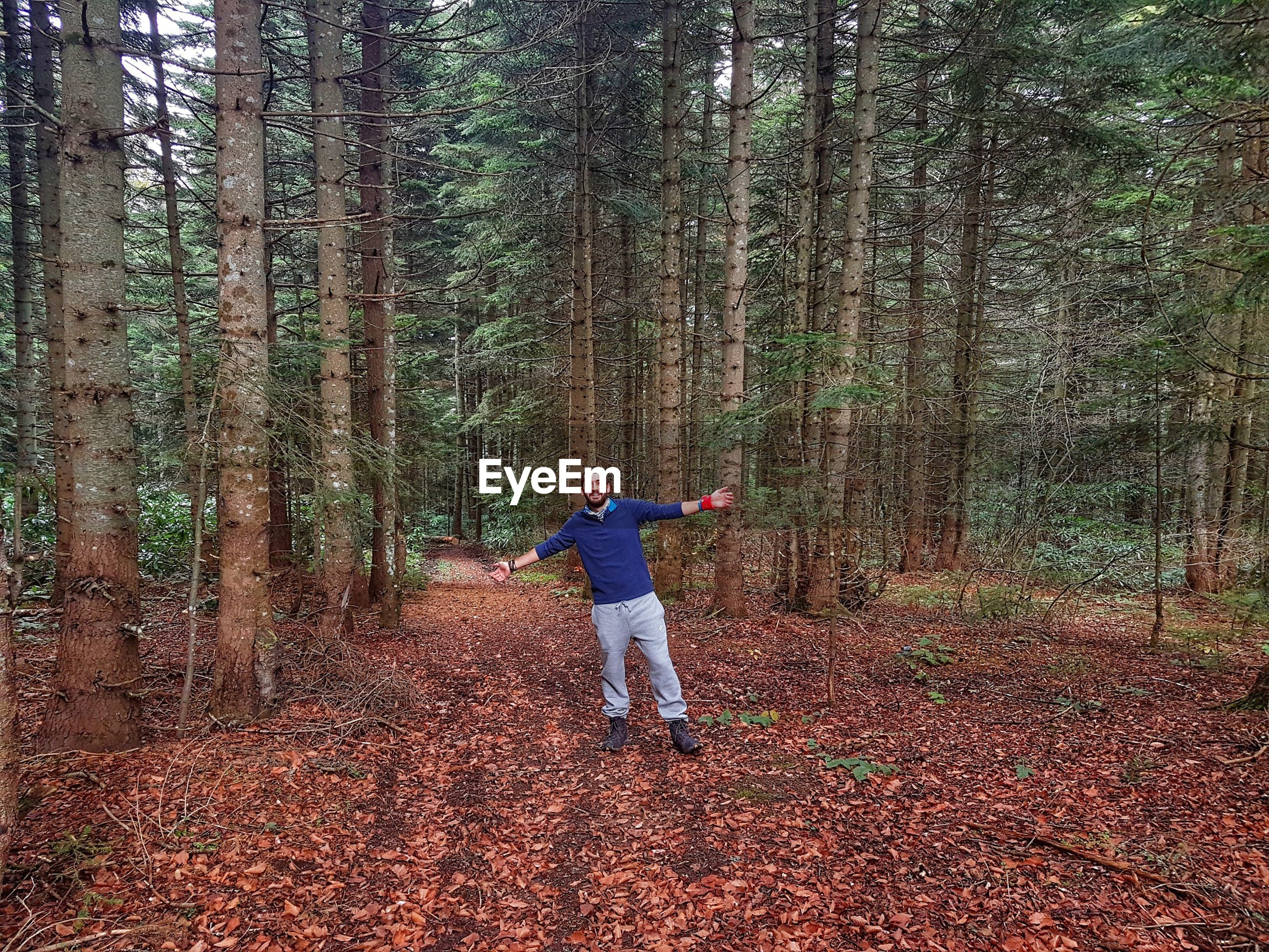 Full length of man with arms outstretched standing by trees in forest