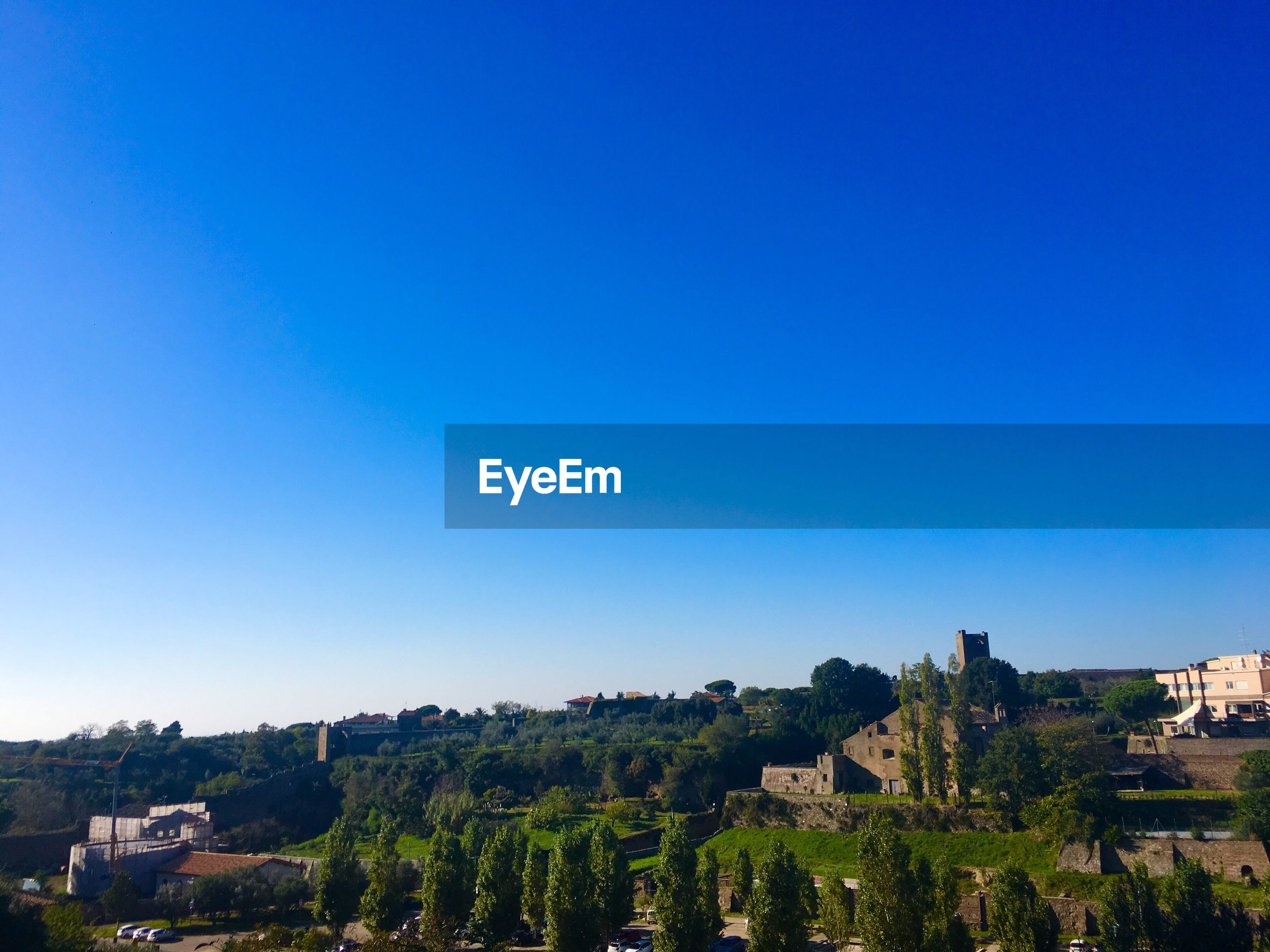 TREES AND TOWNSCAPE AGAINST CLEAR BLUE SKY