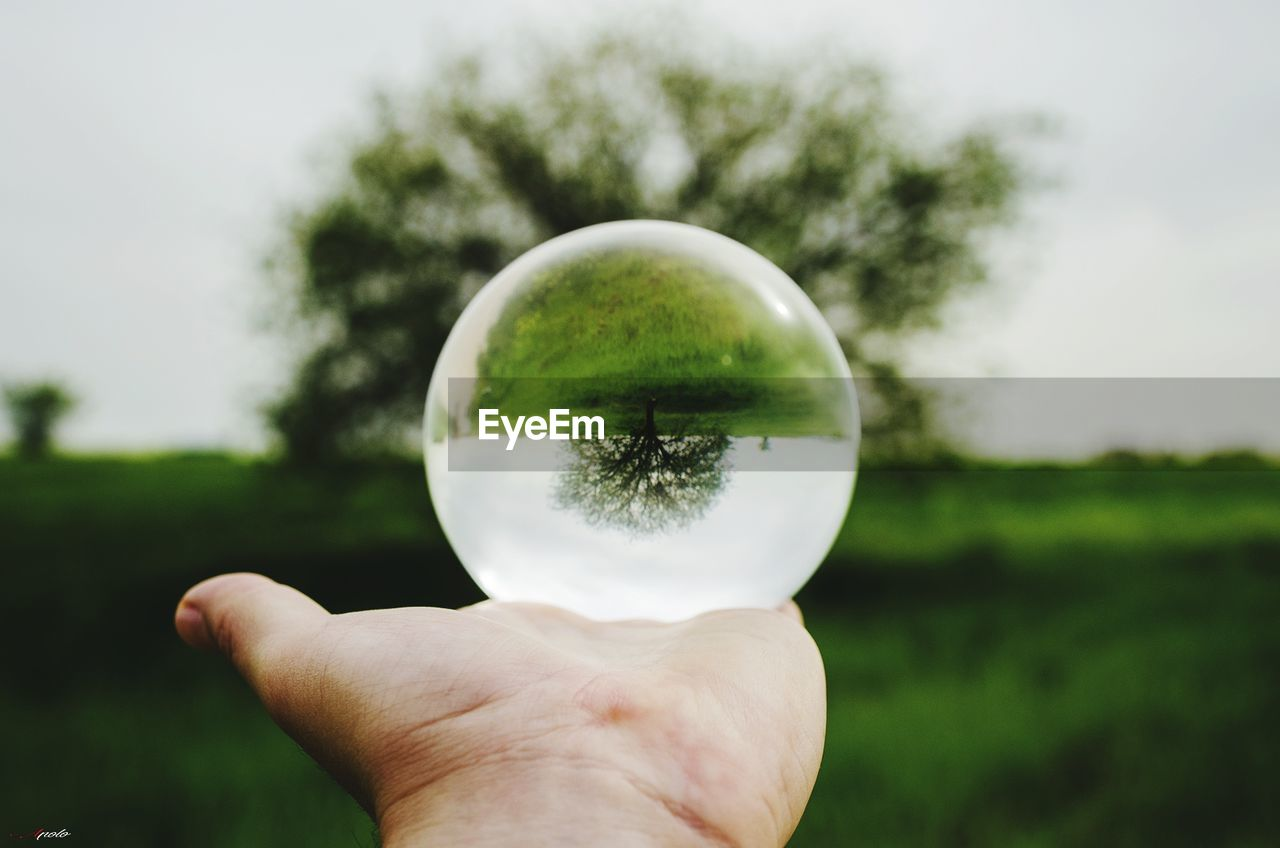human hand, hand, holding, human body part, plant, sphere, tree, one person, focus on foreground, unrecognizable person, nature, finger, day, human finger, real people, personal perspective, land, crystal ball, field, body part, outdoors