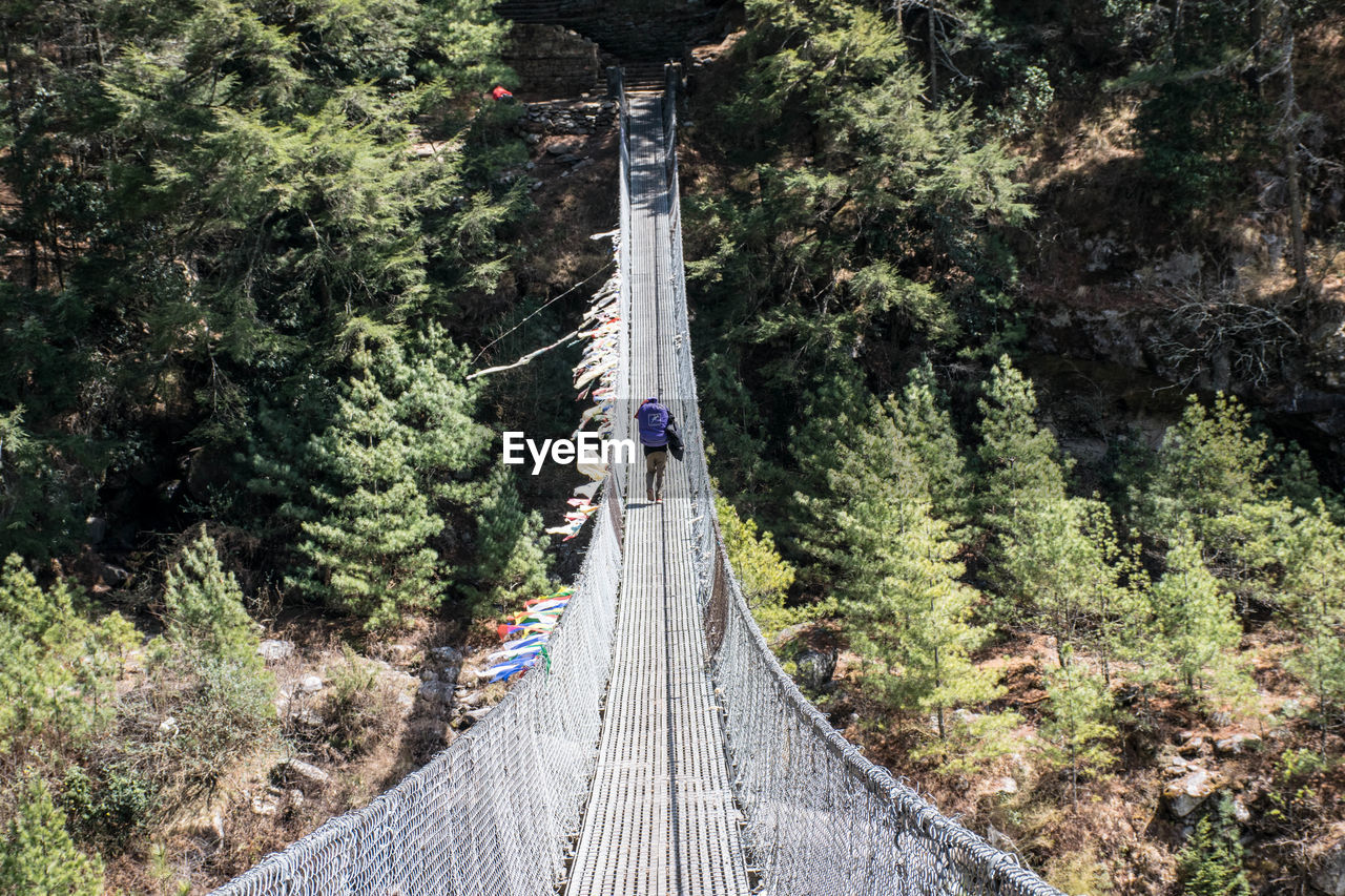 plant, tree, connection, direction, nature, day, the way forward, bridge, built structure, bridge - man made structure, growth, transportation, land, architecture, forest, incidental people, outdoors, real people, green color, rope, footbridge, diminishing perspective, track