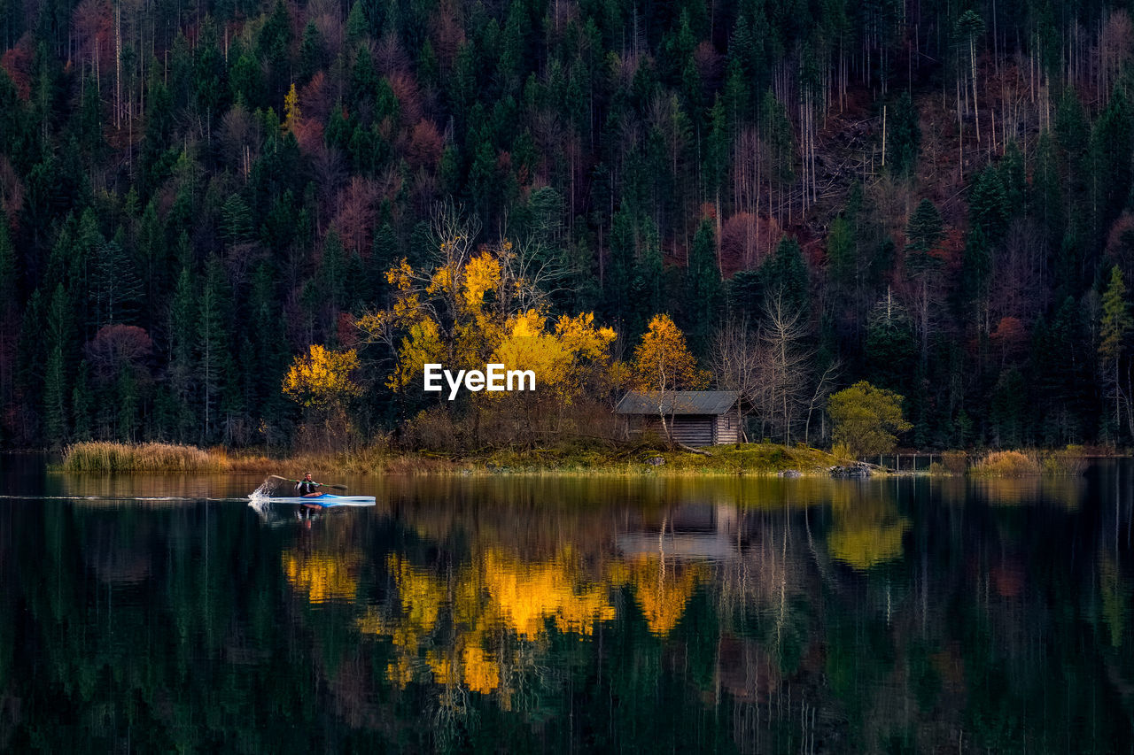 tree, reflection, autumn, lake, nature, forest, change, outdoors, scenics, water, no people, beauty in nature, day