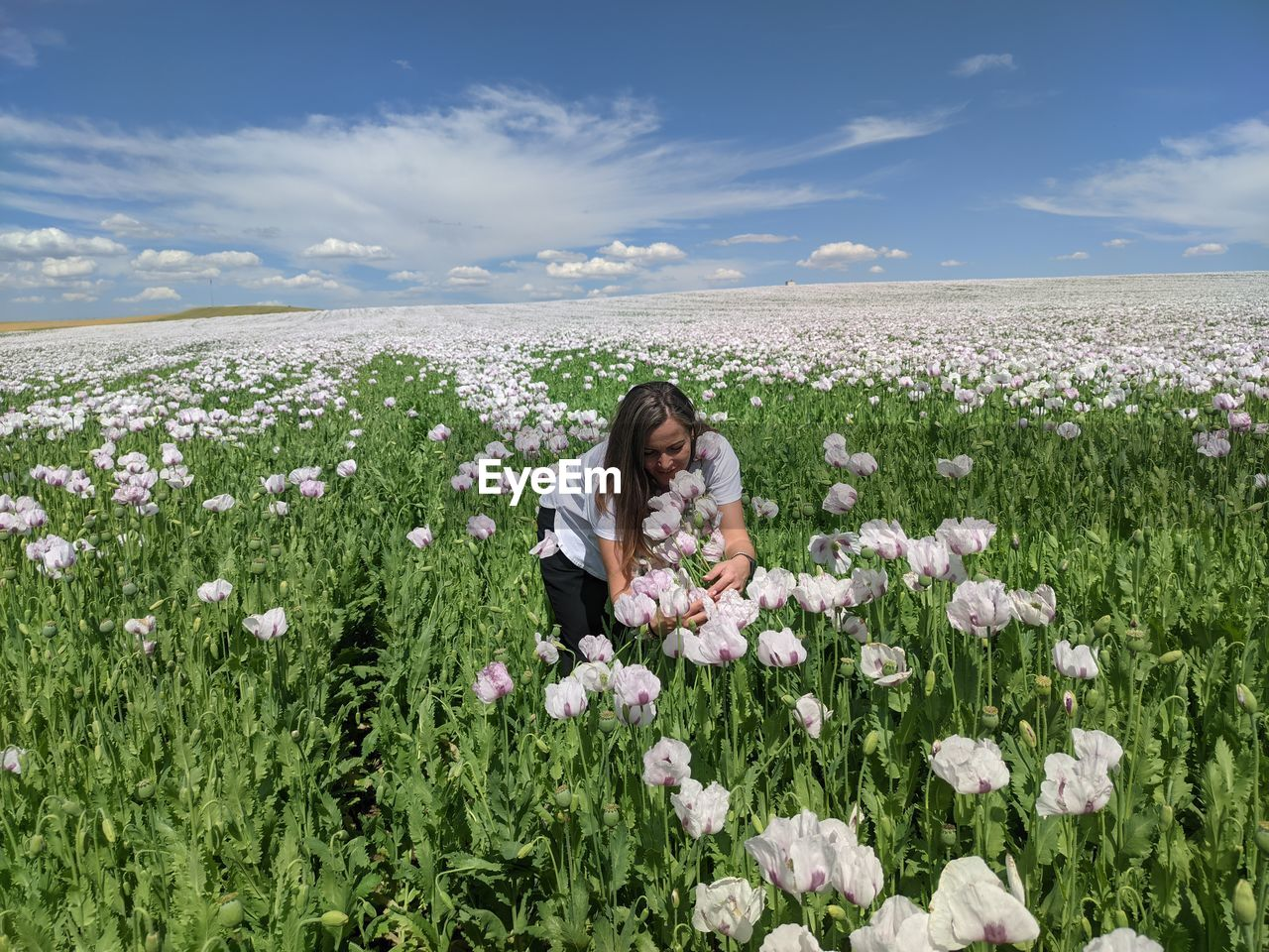Young woman on flowering plants on field against sky