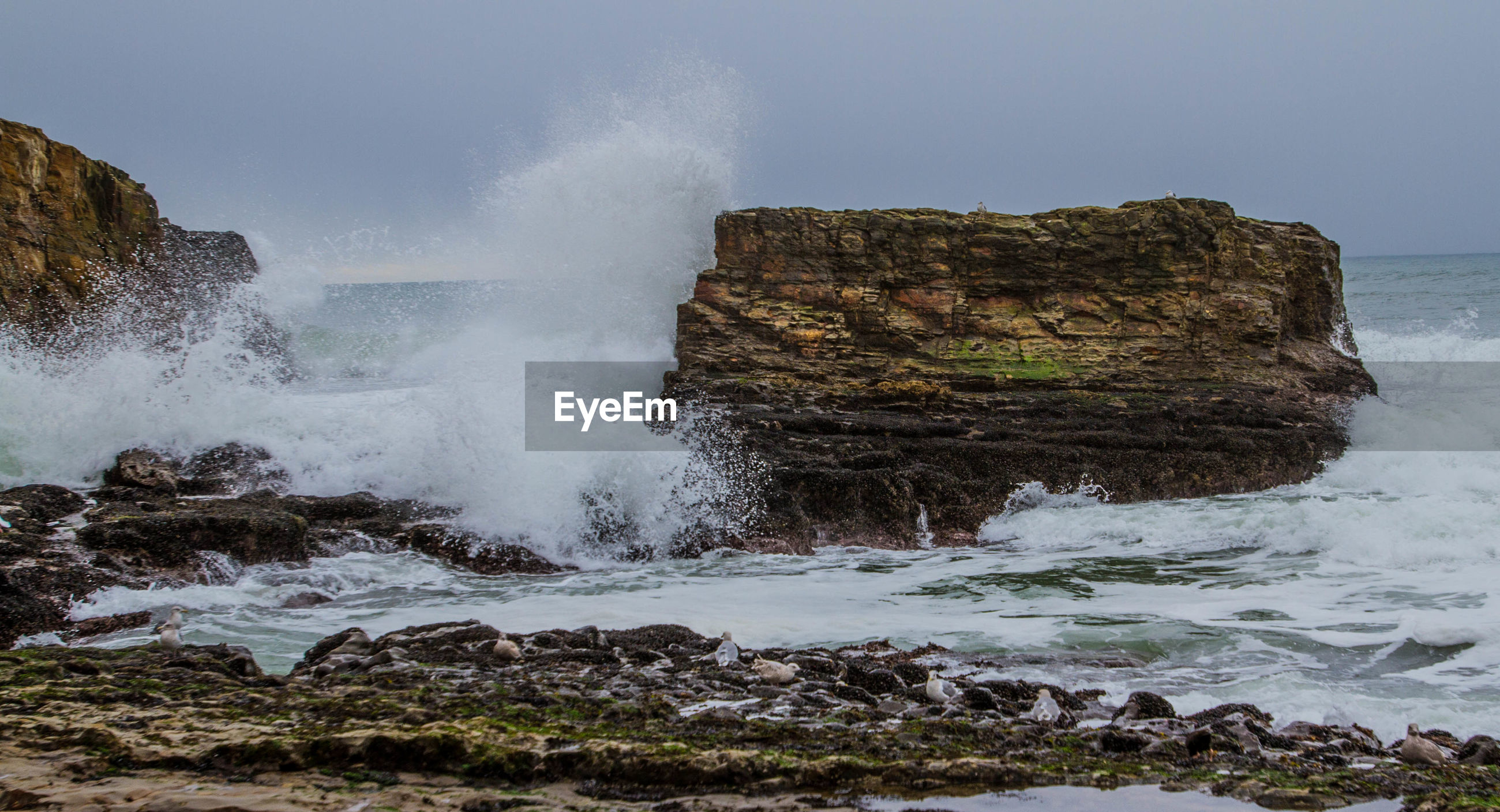 SCENIC VIEW OF WAVES BREAKING AGAINST ROCKS