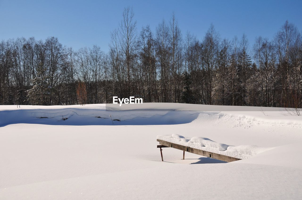 snow, winter, tree, cold temperature, white color, nature, sky, no people, day, tranquil scene, tranquility, plant, land, covering, scenics - nature, absence, outdoors, deep snow, bare tree
