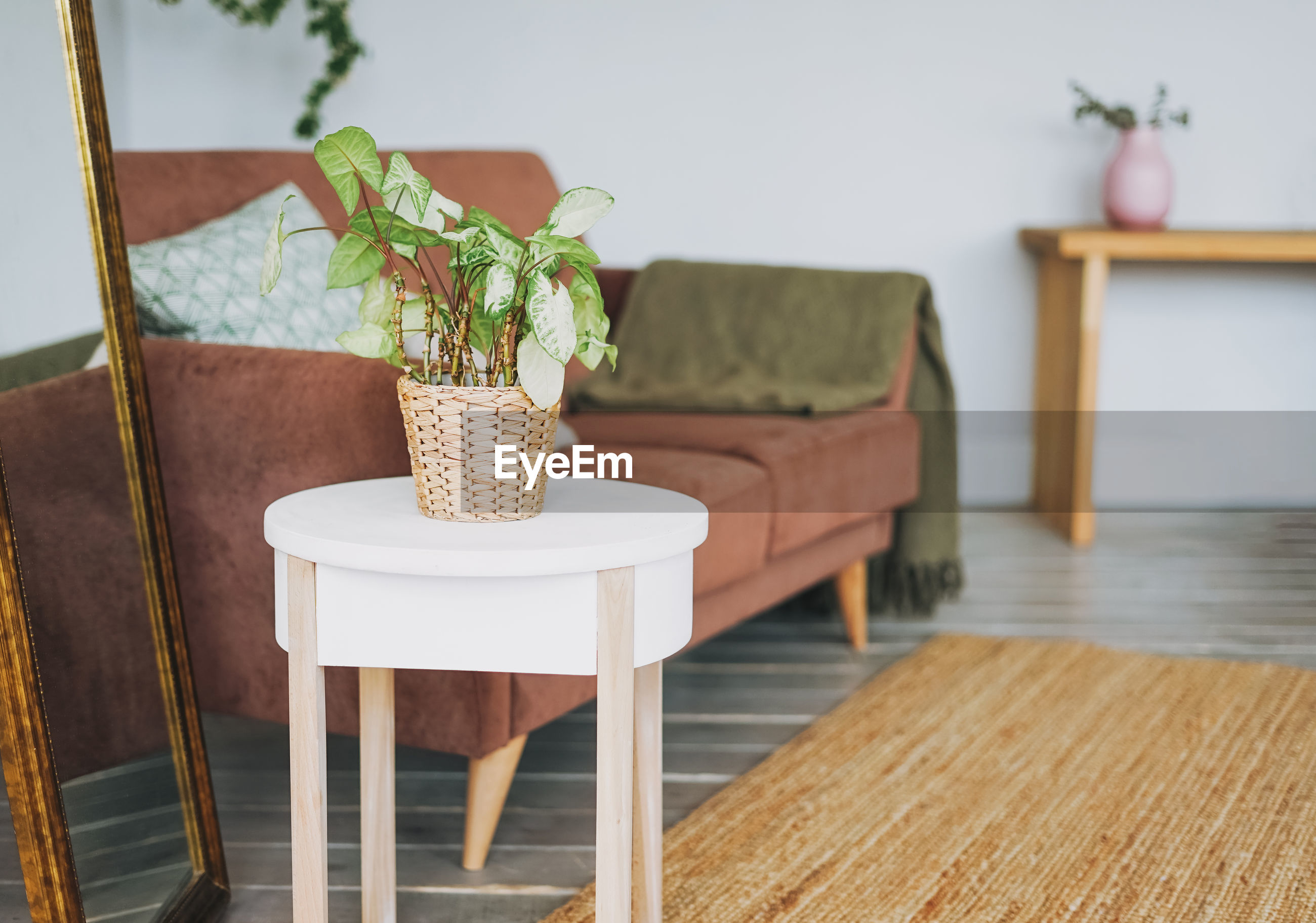POTTED PLANT ON TABLE BY CHAIR AT HOME