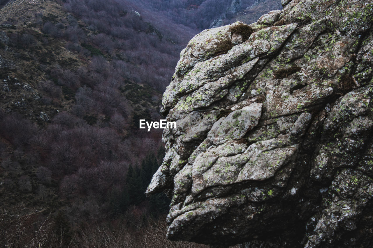LOW ANGLE VIEW OF ROCK FORMATION AMIDST TREES AGAINST MOUNTAINS