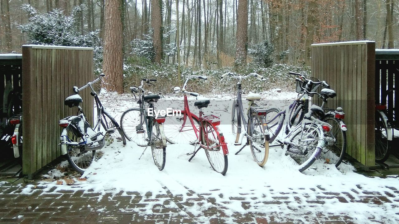 snow, winter, cold temperature, weather, bicycle, stationary, land vehicle, transportation, day, outdoors, mode of transport, nature, tree, no people