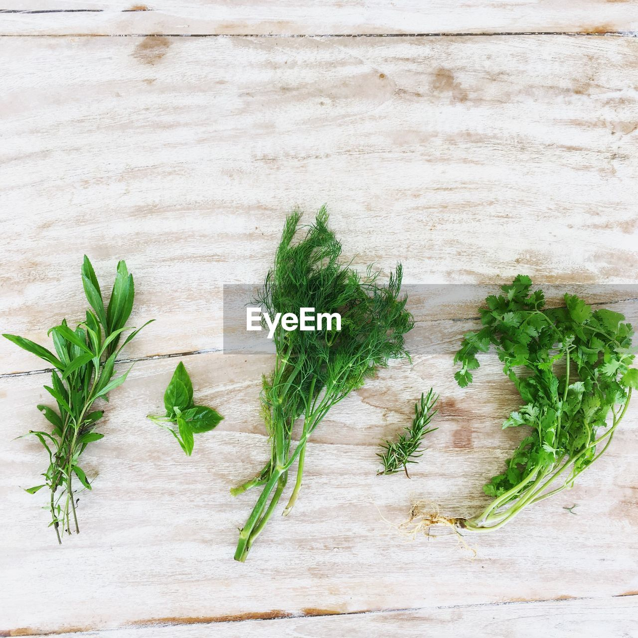 herb, green color, food and drink, freshness, food, healthy eating, wellbeing, table, leaf, plant part, no people, indoors, wood - material, vegetable, still life, plant, high angle view, close-up, nature, parsley, mint leaf - culinary, leaves