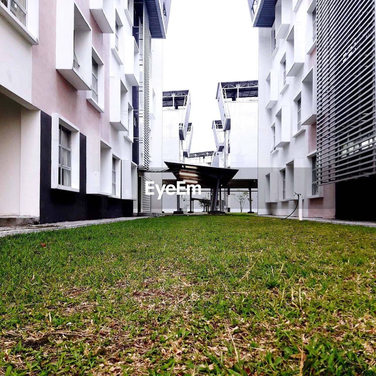 built structure, building exterior, architecture, building, grass, plant, day, residential district, nature, field, no people, land, outdoors, seat, green color, window, house, lawn, front or back yard, chair, apartment, place