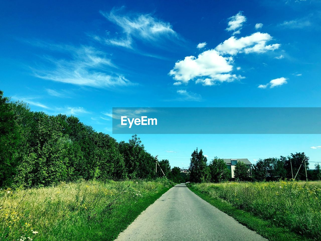 plant, sky, the way forward, direction, tree, road, transportation, cloud - sky, beauty in nature, diminishing perspective, nature, green color, no people, tranquil scene, day, tranquility, grass, land, growth, landscape, outdoors, long