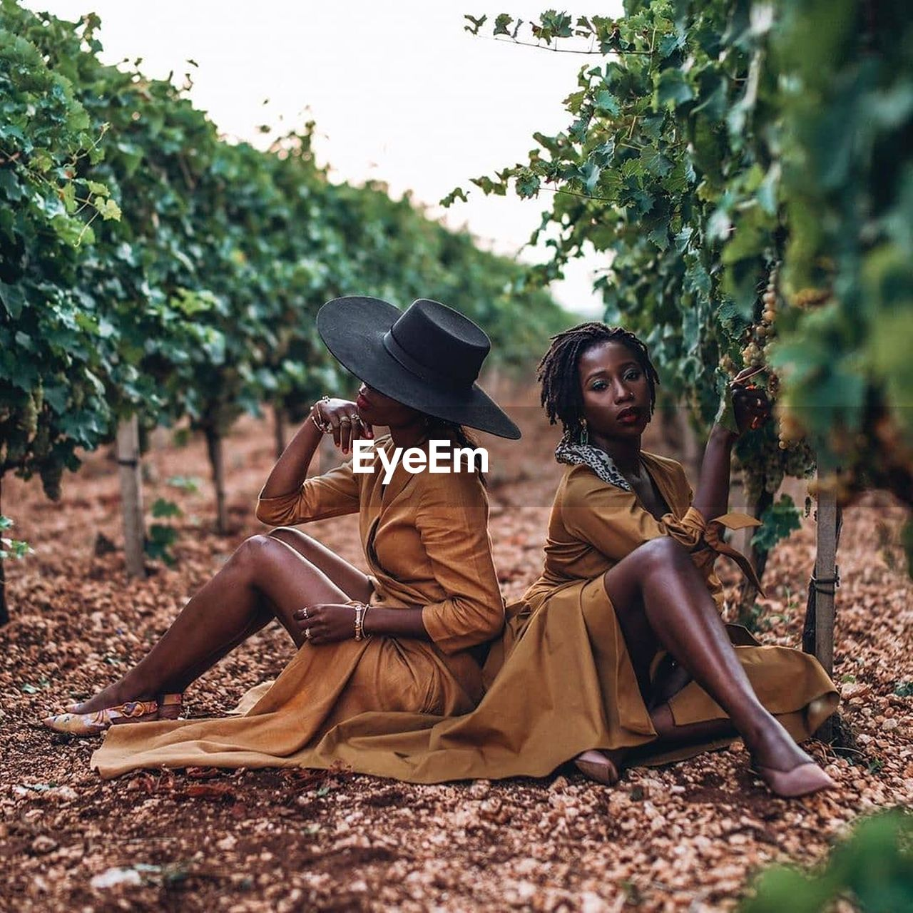 Woman sitting in vineyard against sky