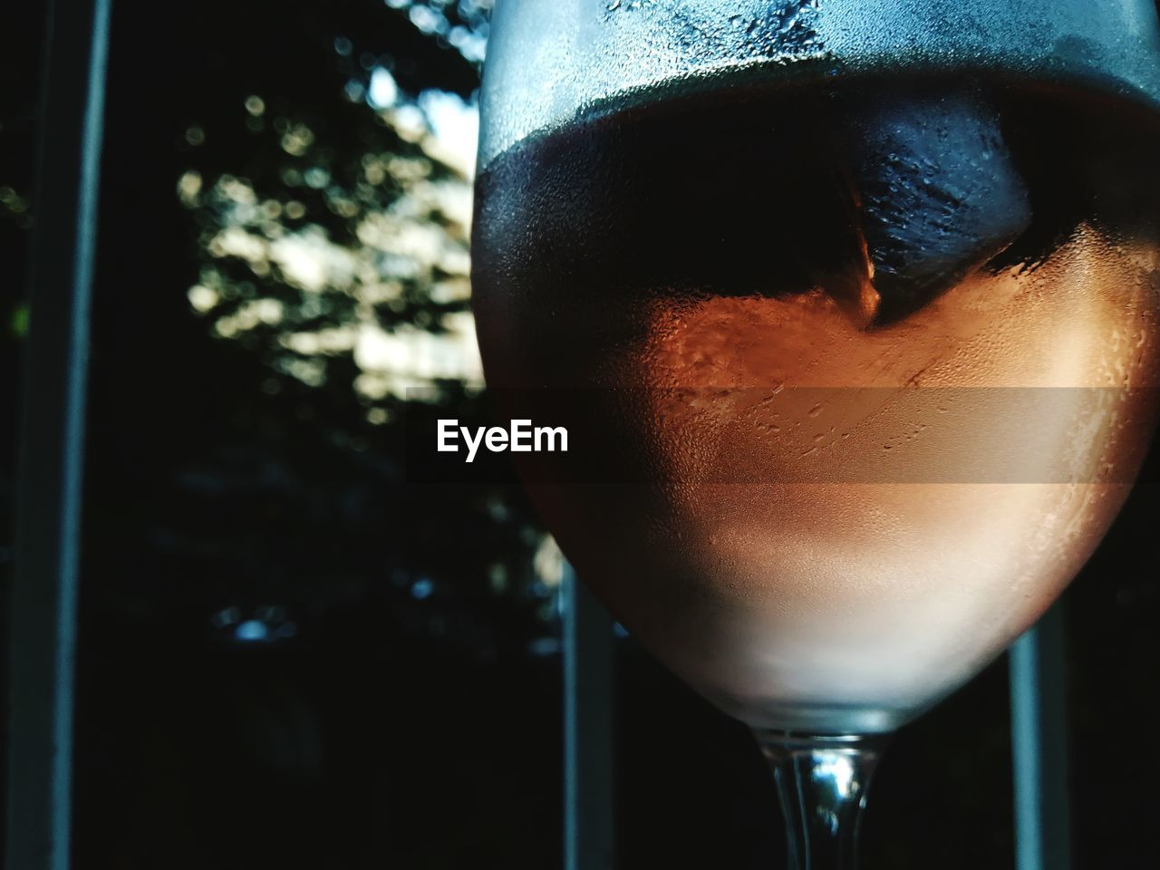 drink, refreshment, food and drink, close-up, alcohol, drinking glass, focus on foreground, no people, cocktail, freshness, indoors, martini glass, day
