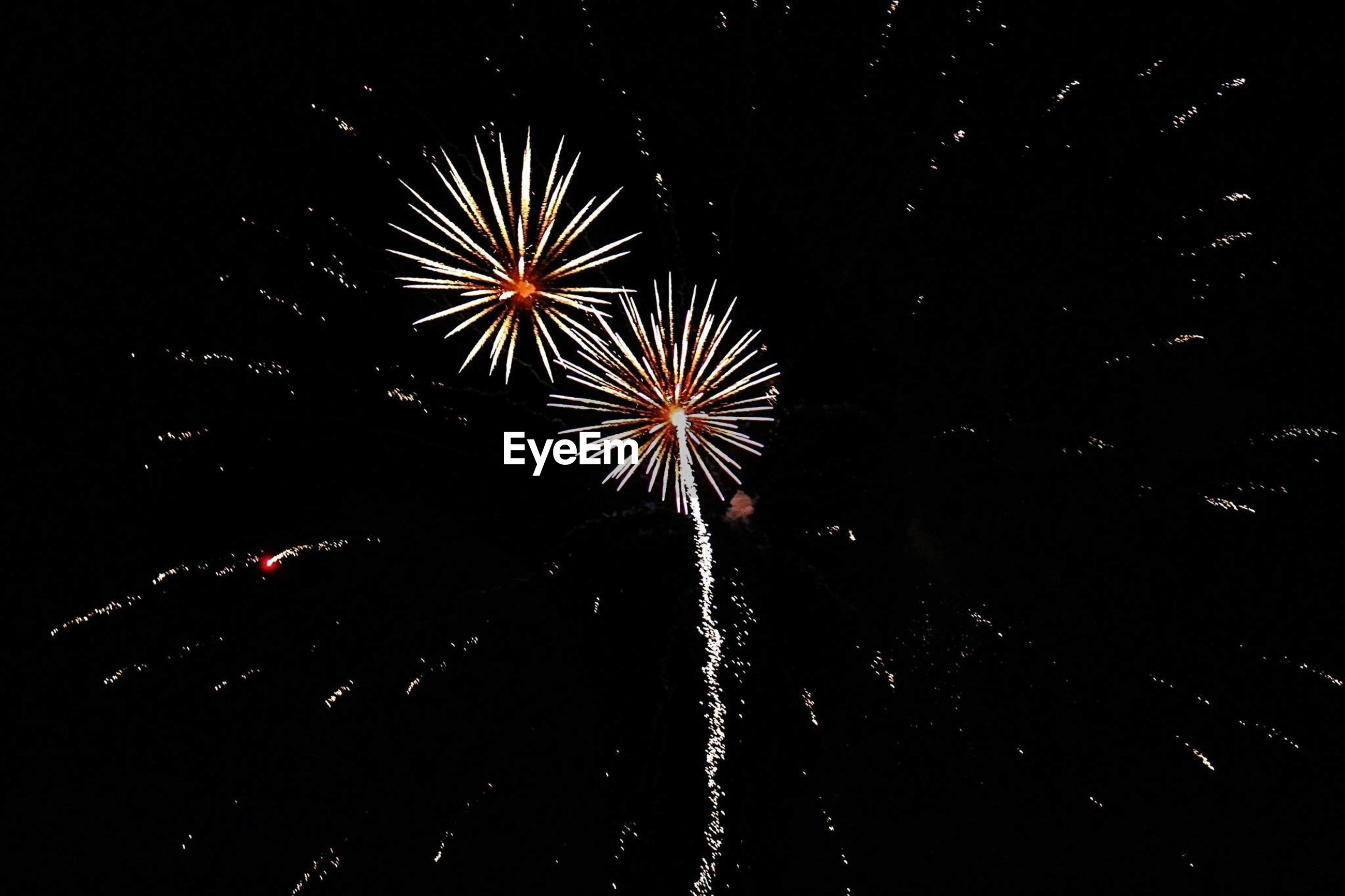 Low angle view of fireworks against sky at night
