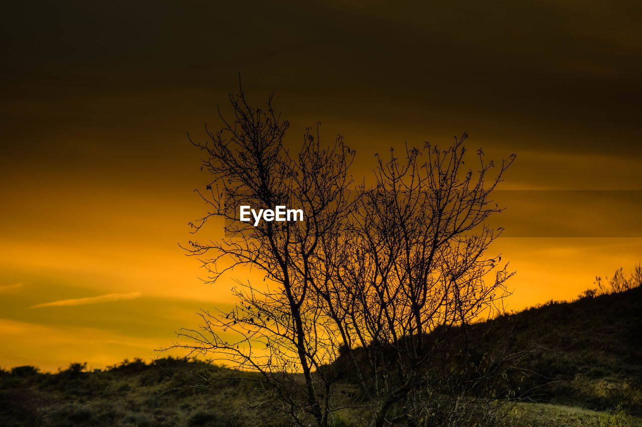 sunset, sky, orange color, beauty in nature, scenics - nature, tranquil scene, silhouette, tranquility, plant, tree, bare tree, cloud - sky, no people, nature, non-urban scene, branch, landscape, environment, outdoors, idyllic, isolated, romantic sky
