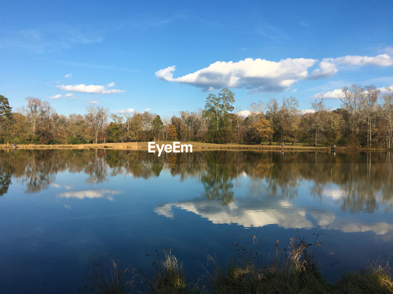 reflection, lake, sky, nature, water, tree, beauty in nature, tranquility, tranquil scene, scenics, standing water, cloud - sky, outdoors, no people, blue, day