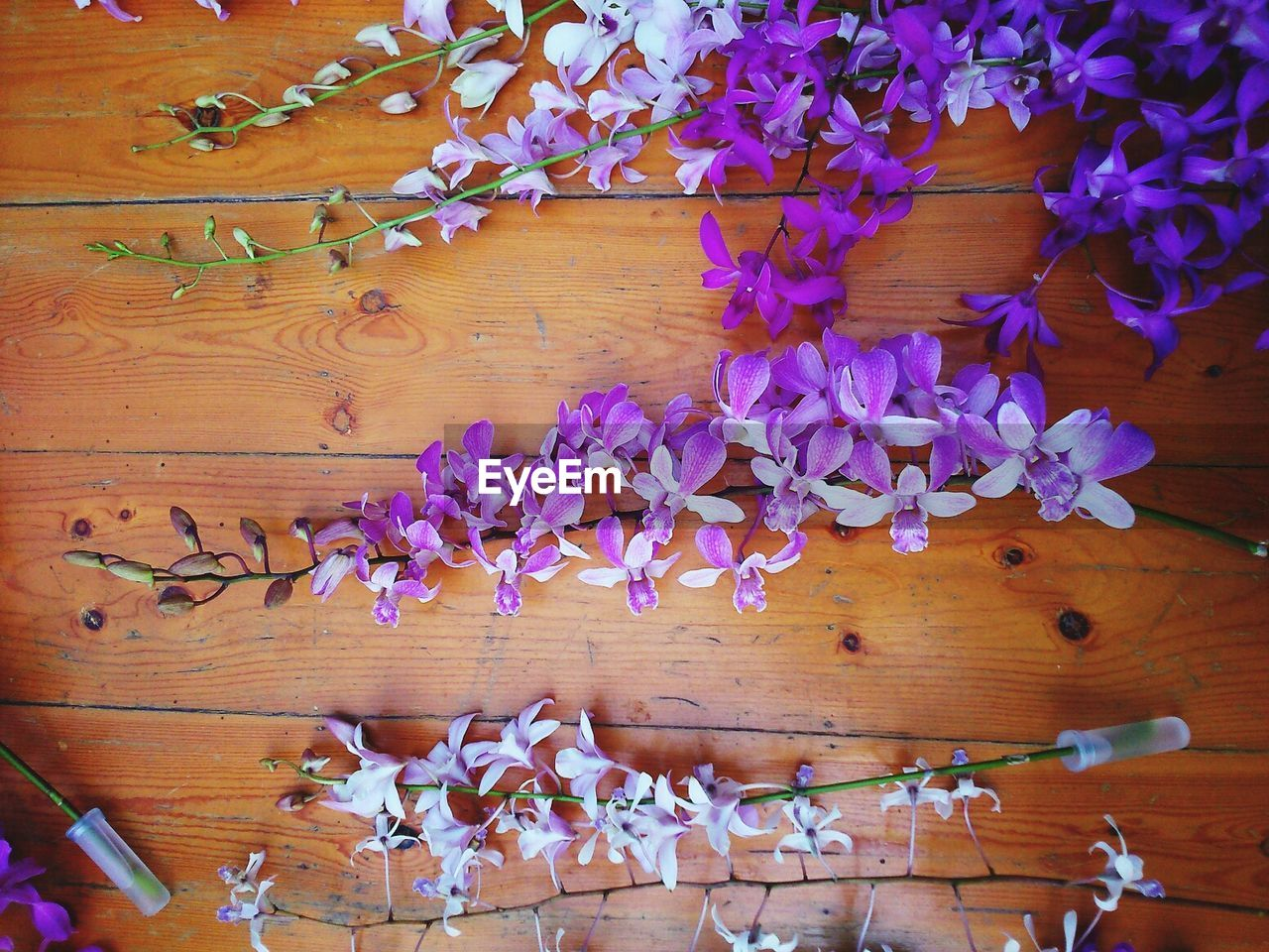 Close-up overhead view of flowers on wooden table
