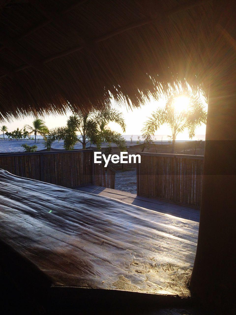 Trees On Beach Against Bright Sun Seen Through Hut