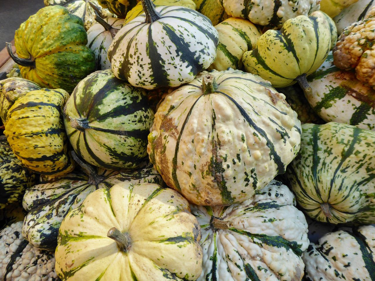 food and drink, food, freshness, healthy eating, wellbeing, vegetable, market, pumpkin, close-up, fruit, no people, full frame, large group of objects, squash - vegetable, backgrounds, retail, market stall, raw food, for sale, variation, farmer's market, ripe