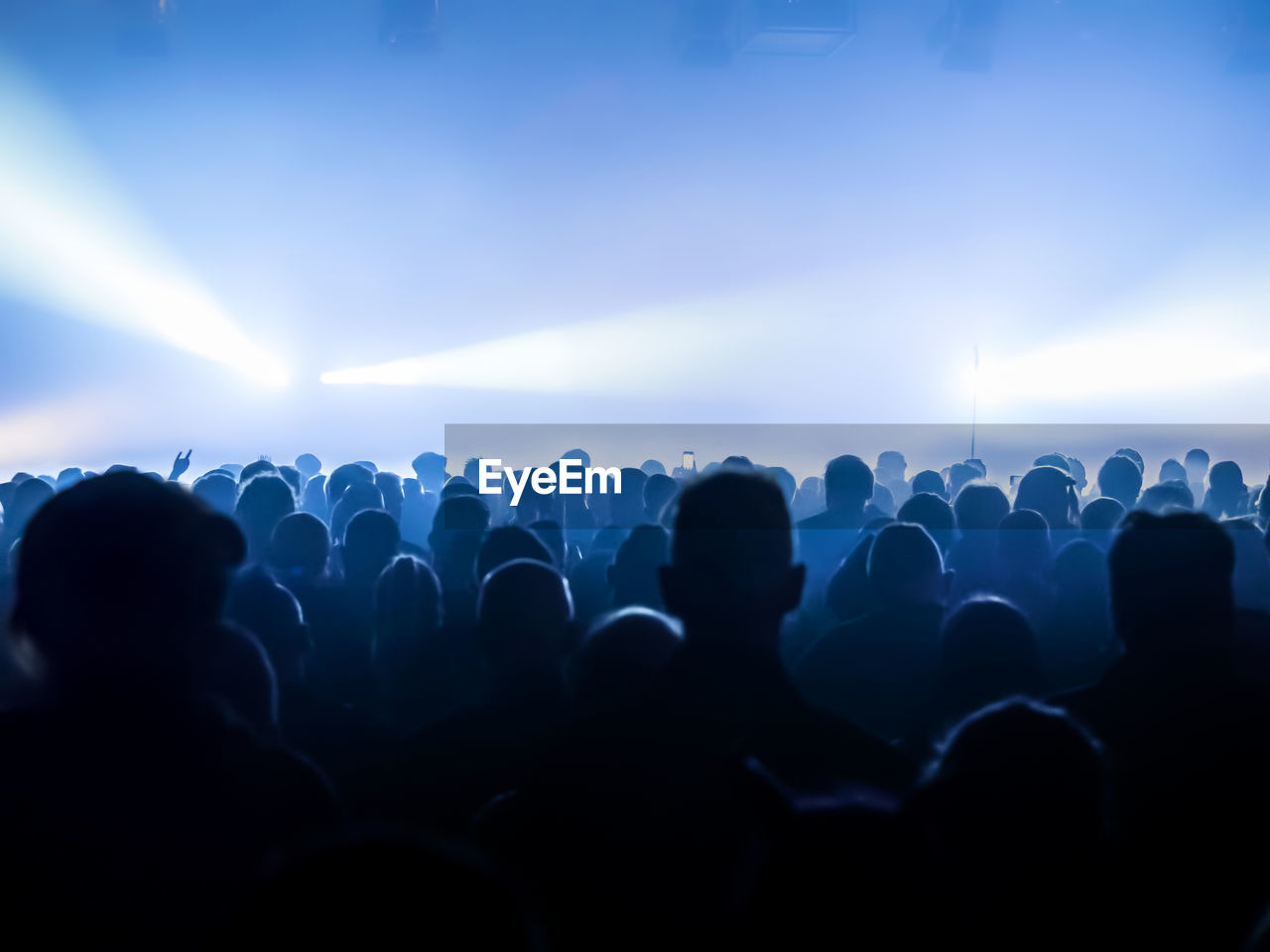 Rear view of silhouette crowd standing during music concert