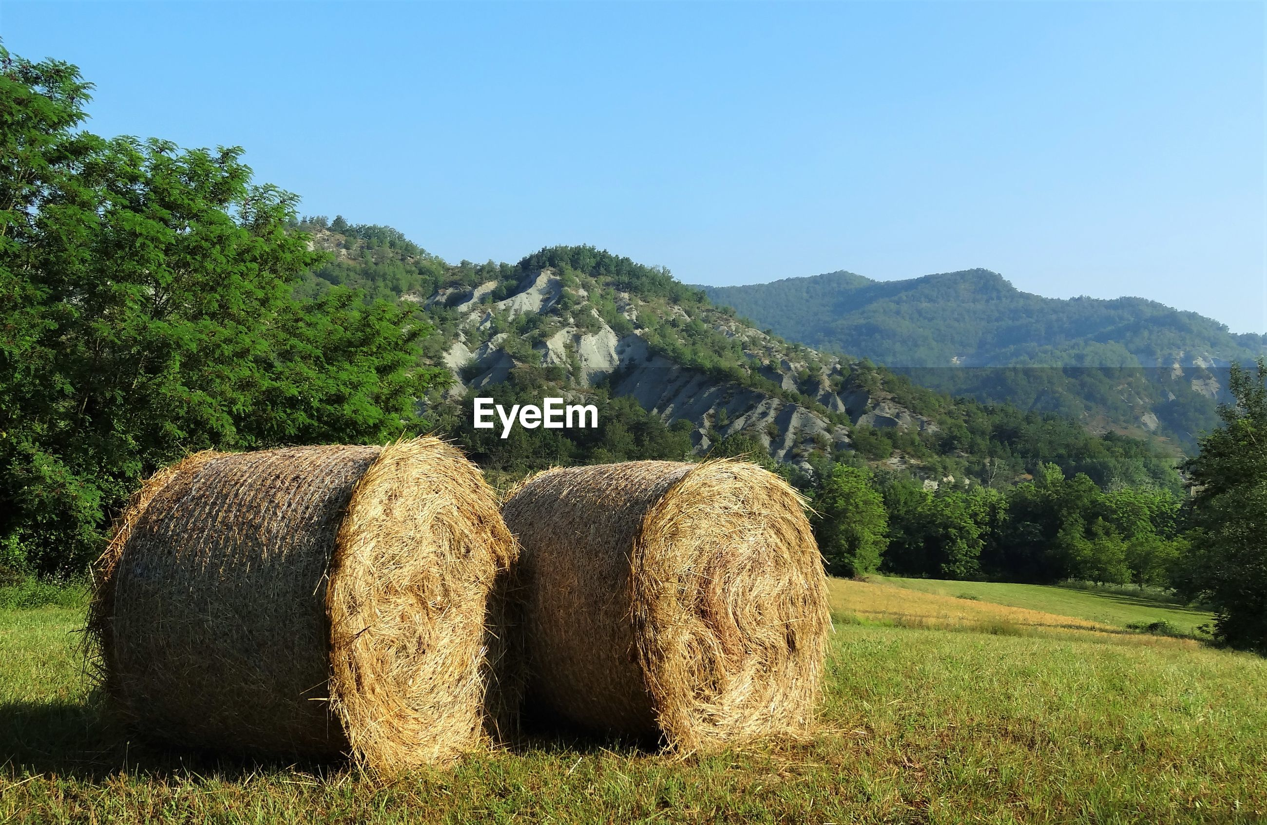 Hay bales on grassy field by mountains against clear sky