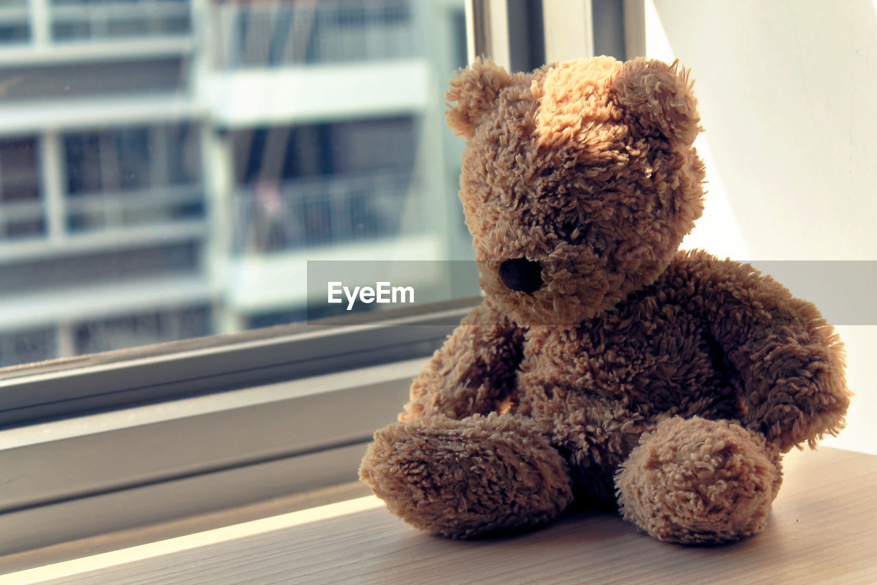 teddy bear, stuffed toy, toy, childhood, no people, indoors, close-up, day