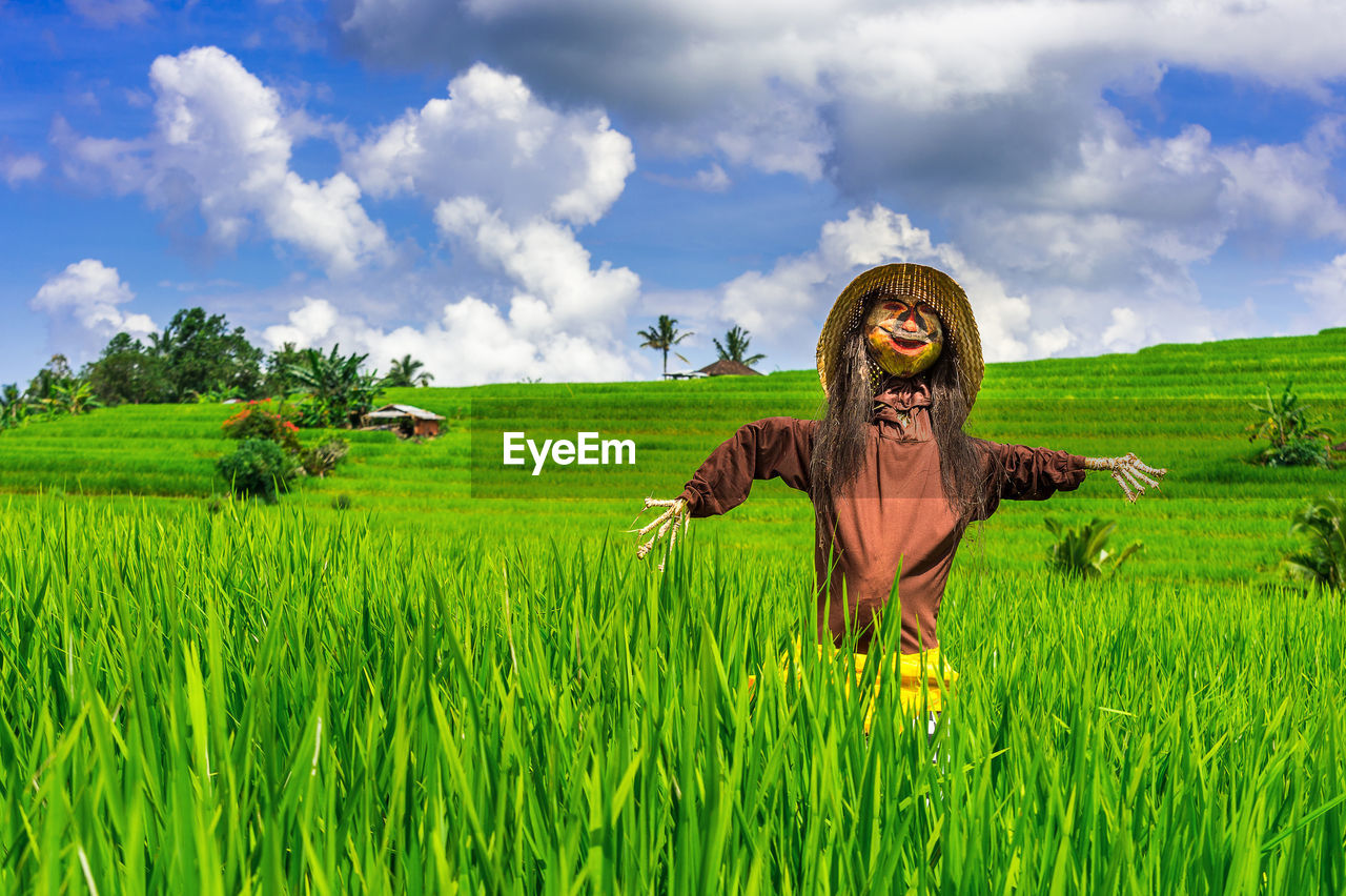 field, agriculture, green color, cloud - sky, sky, growth, rural scene, grass, nature, farm, scarecrow, landscape, day, outdoors, green, crop, one person, scenics, beauty in nature, tranquil scene, plant, happiness, tree, cereal plant, real people, people