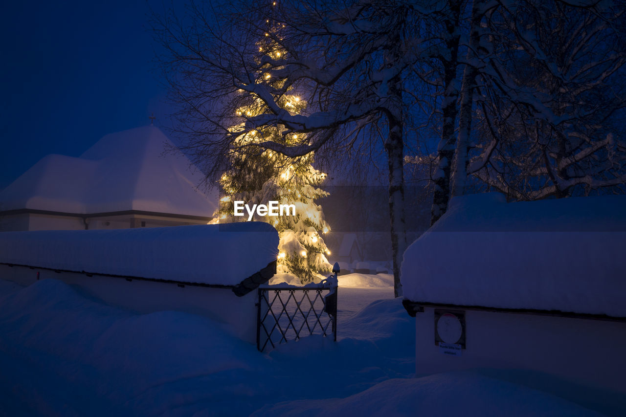winter, cold temperature, snow, tree, night, nature, no people, outdoors, illuminated, scenics, tranquil scene, tranquility, beauty in nature, blue, bare tree, sky, architecture, snowdrift