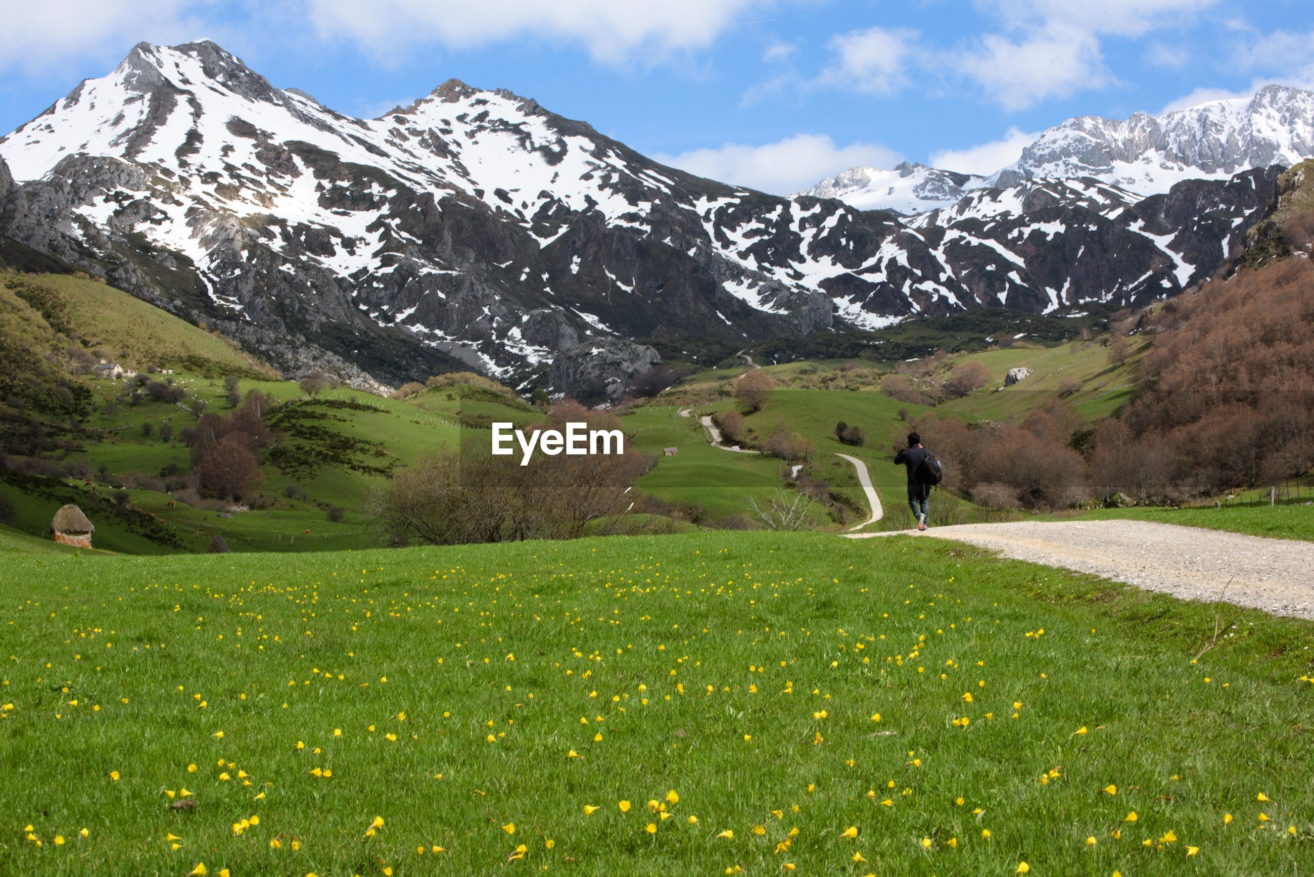 Rear view of man walking on footpath amidst grassy field against mountains