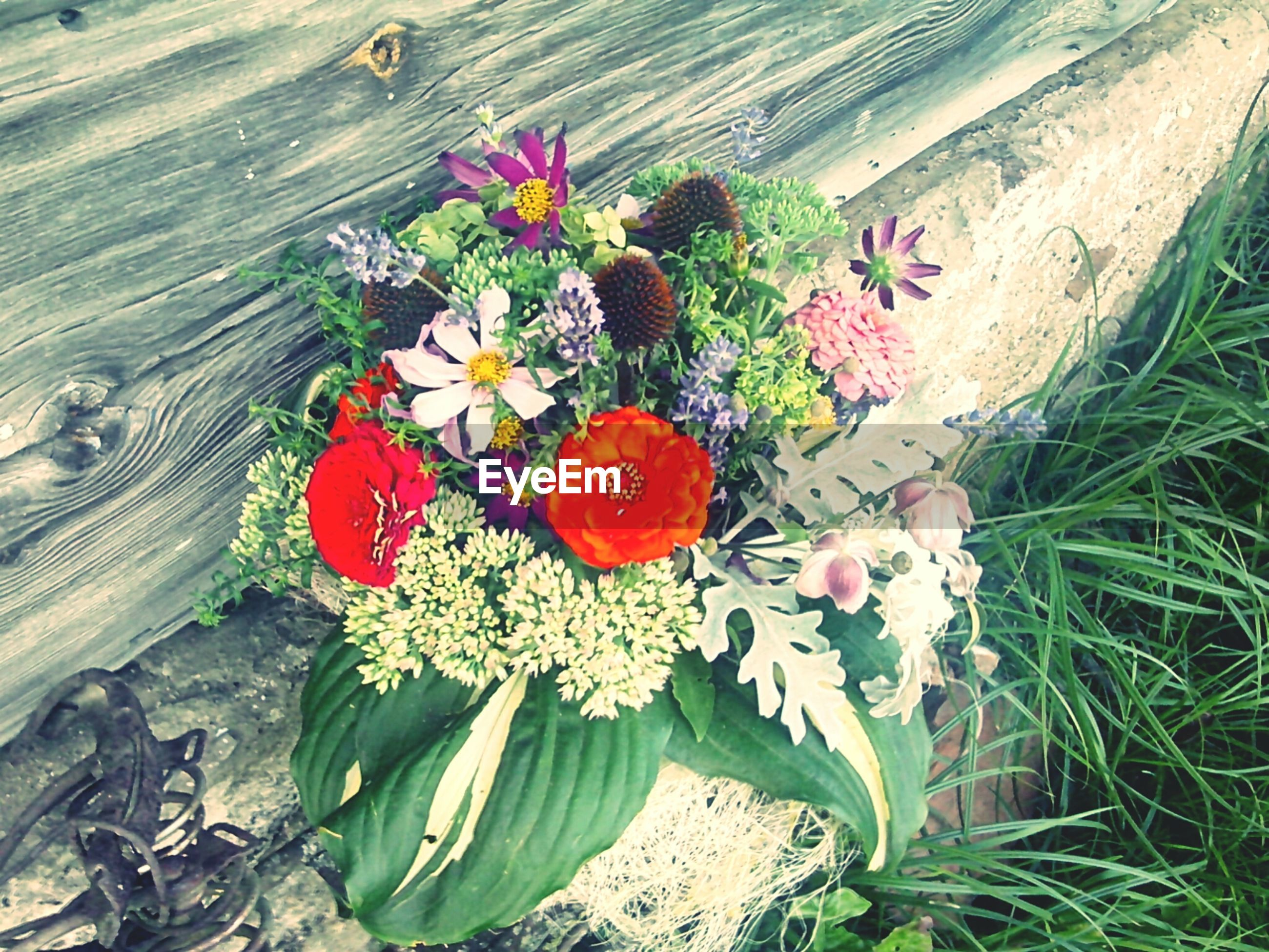 flower, freshness, fragility, high angle view, growth, plant, beauty in nature, nature, petal, bouquet, flower head, springtime, bunch of flowers, day, flower arrangement, blossom, botany, outdoors, in bloom, red