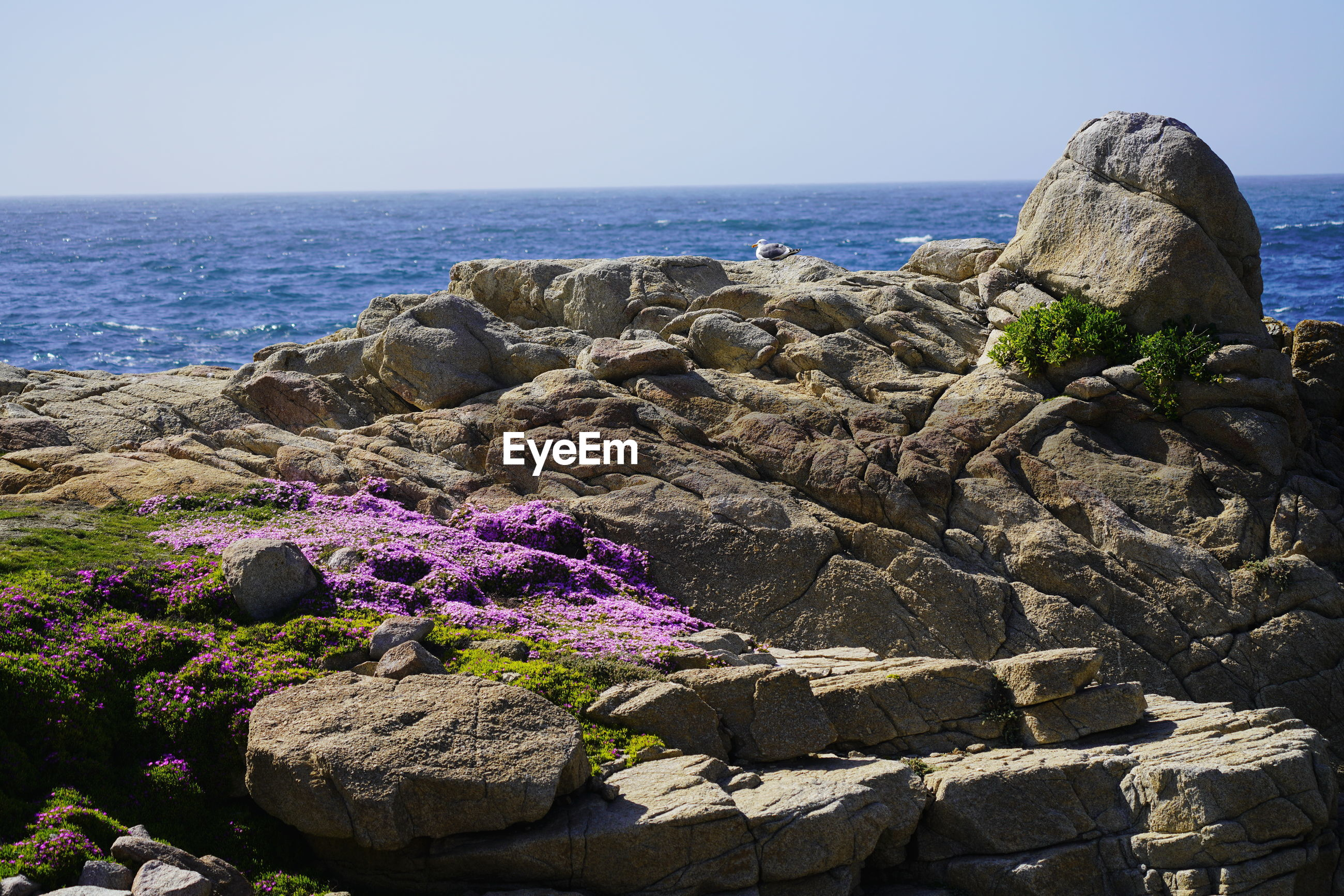 Scenic view of rocks by sea against sky
