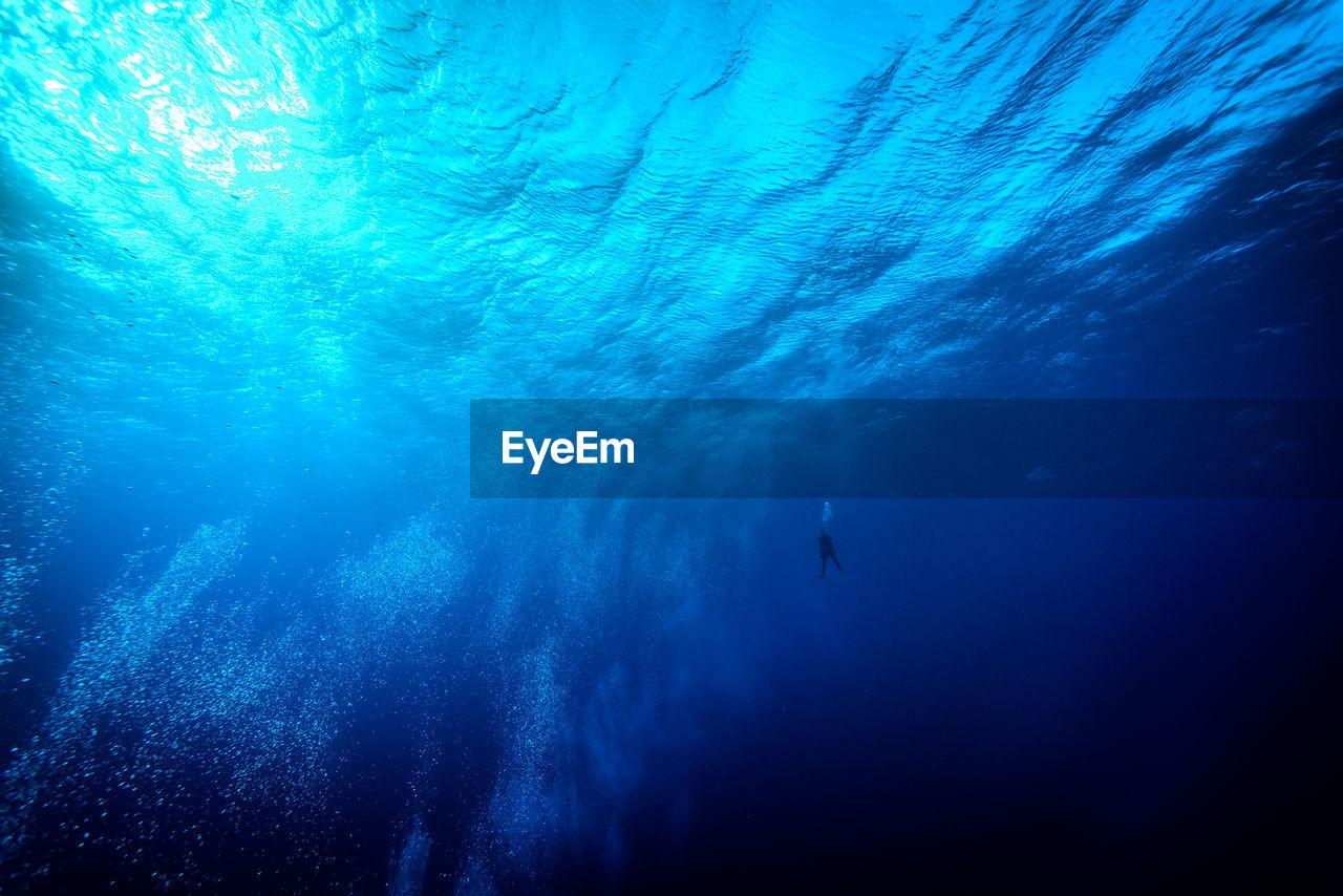Close-Up Of Scuba Diver Swimming In Sea
